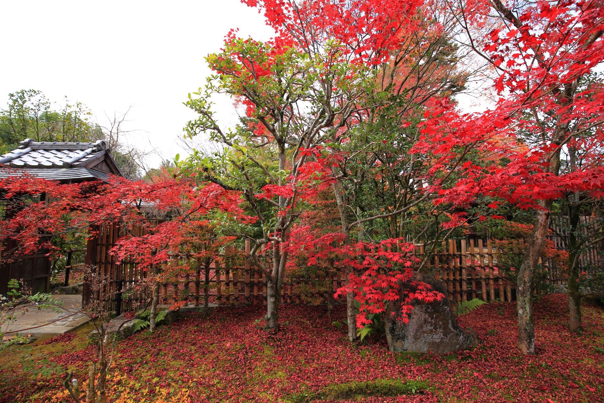 大法院の苔や岩に散る見事な紅葉