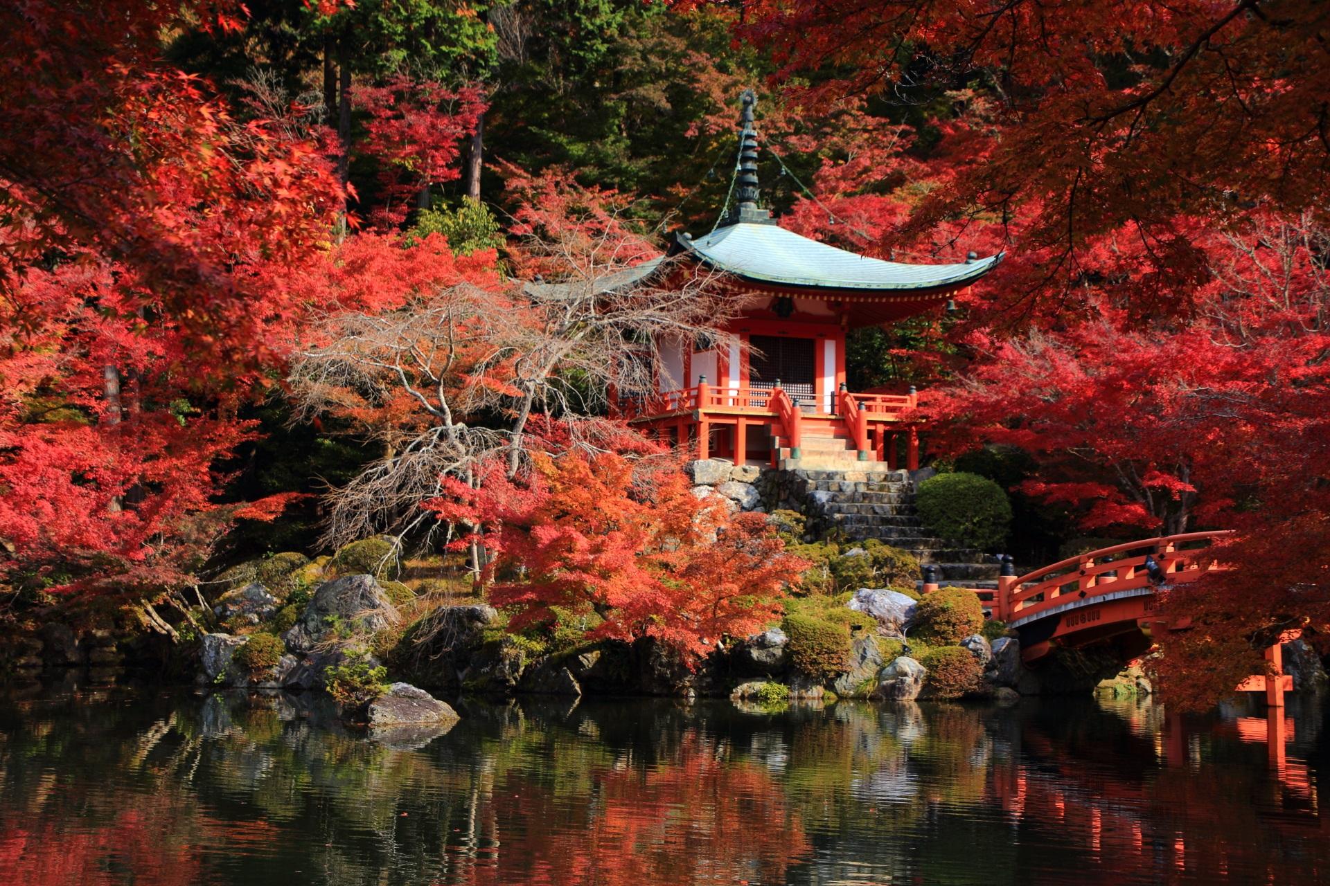 弁天堂を彩る圧巻の紅葉と水鏡