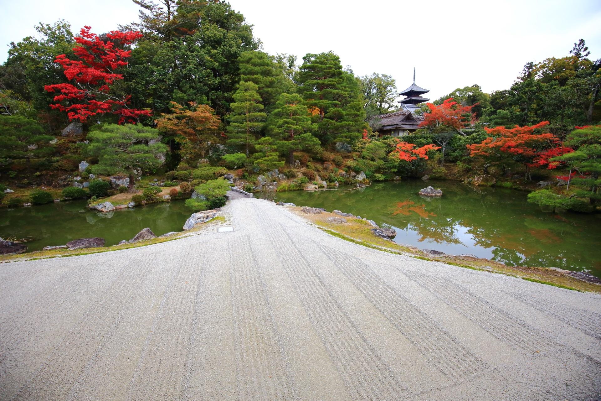 仁和寺の御殿北庭と多彩な紅葉
