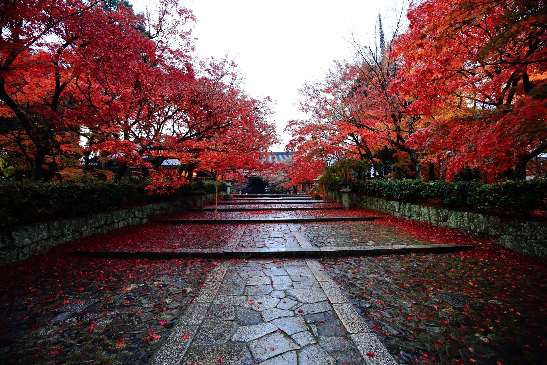 真如堂の本堂へ続く緩い石段の参道と紅葉