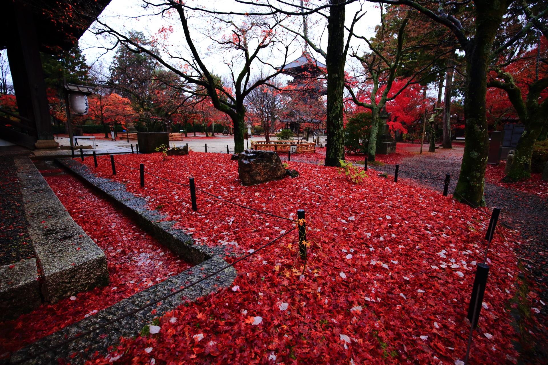 真如堂の本堂付近から眺めた三重塔と散り紅葉