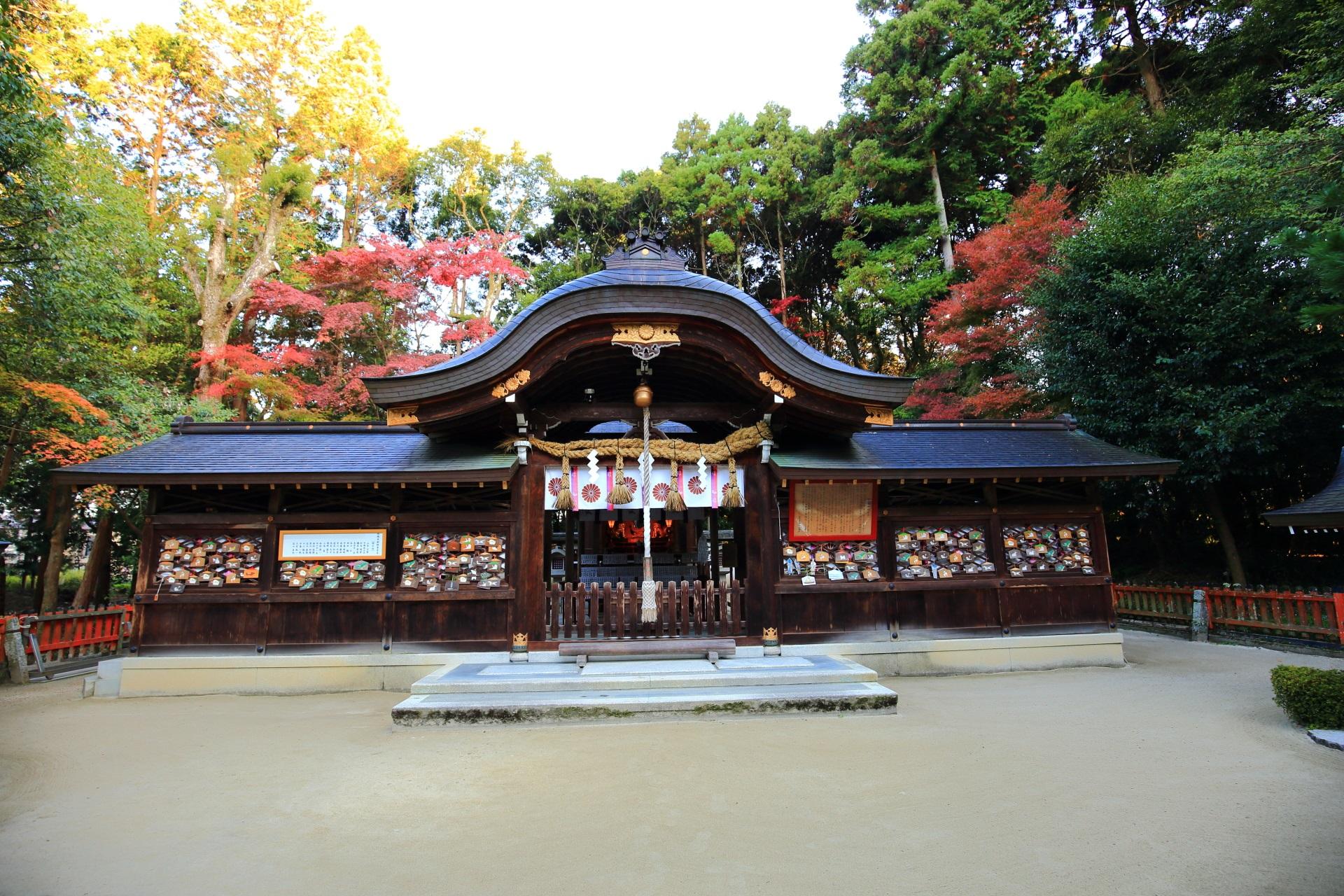 鷺森神社の本殿と後ろで色づく紅葉