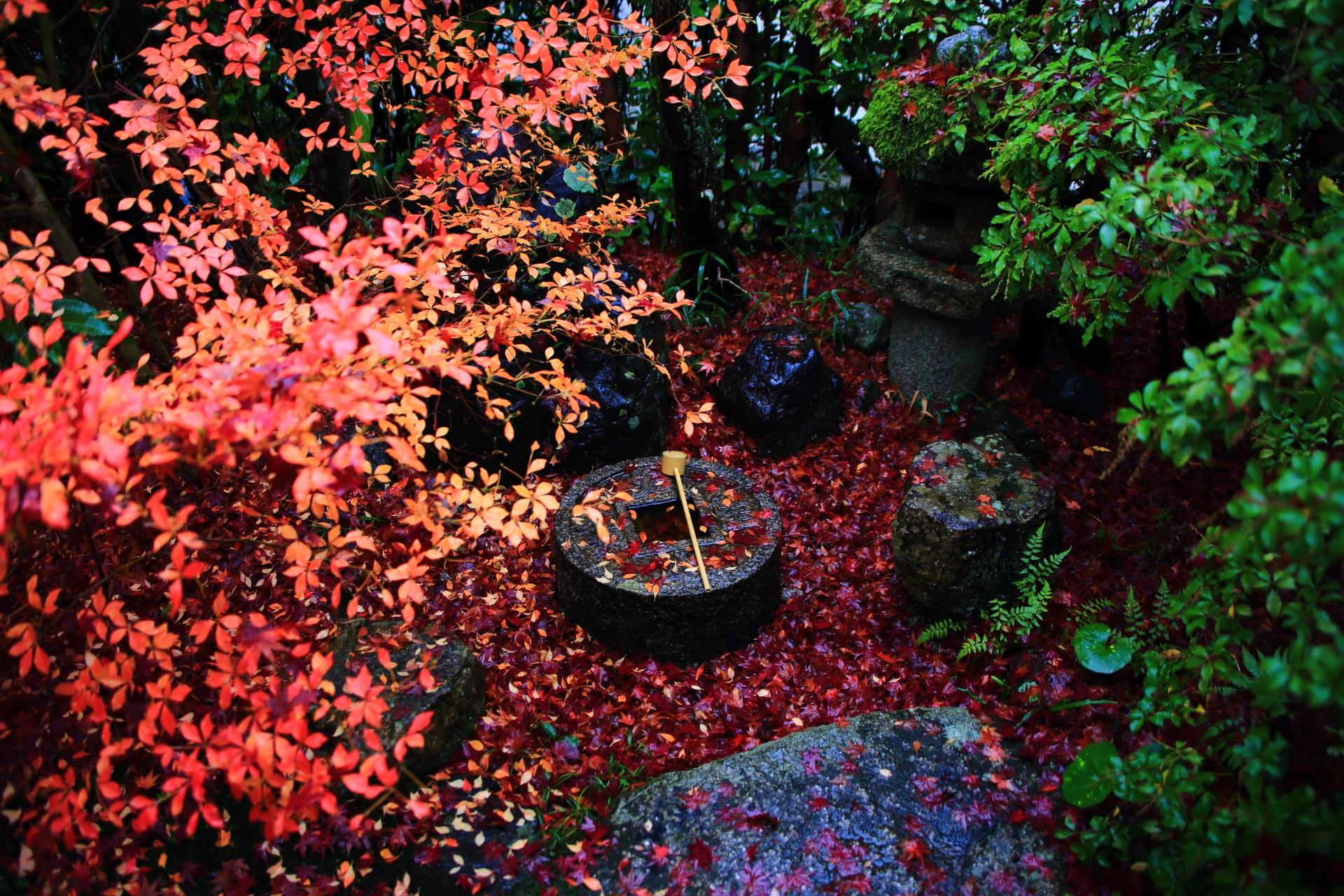 金福寺の庭園入口付近の蹲(つくばい)