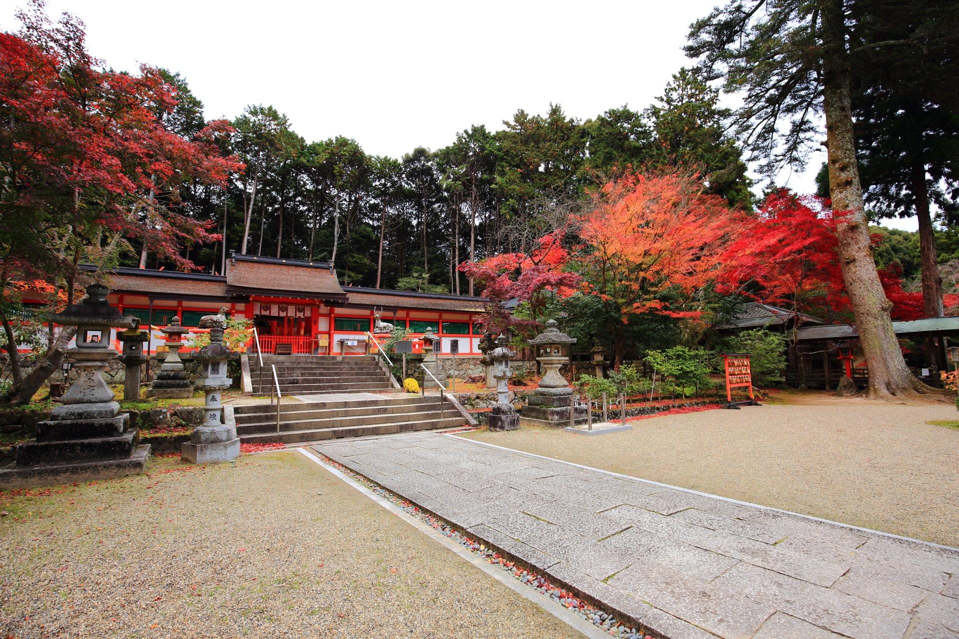 大原野神社の本殿と多彩な紅葉