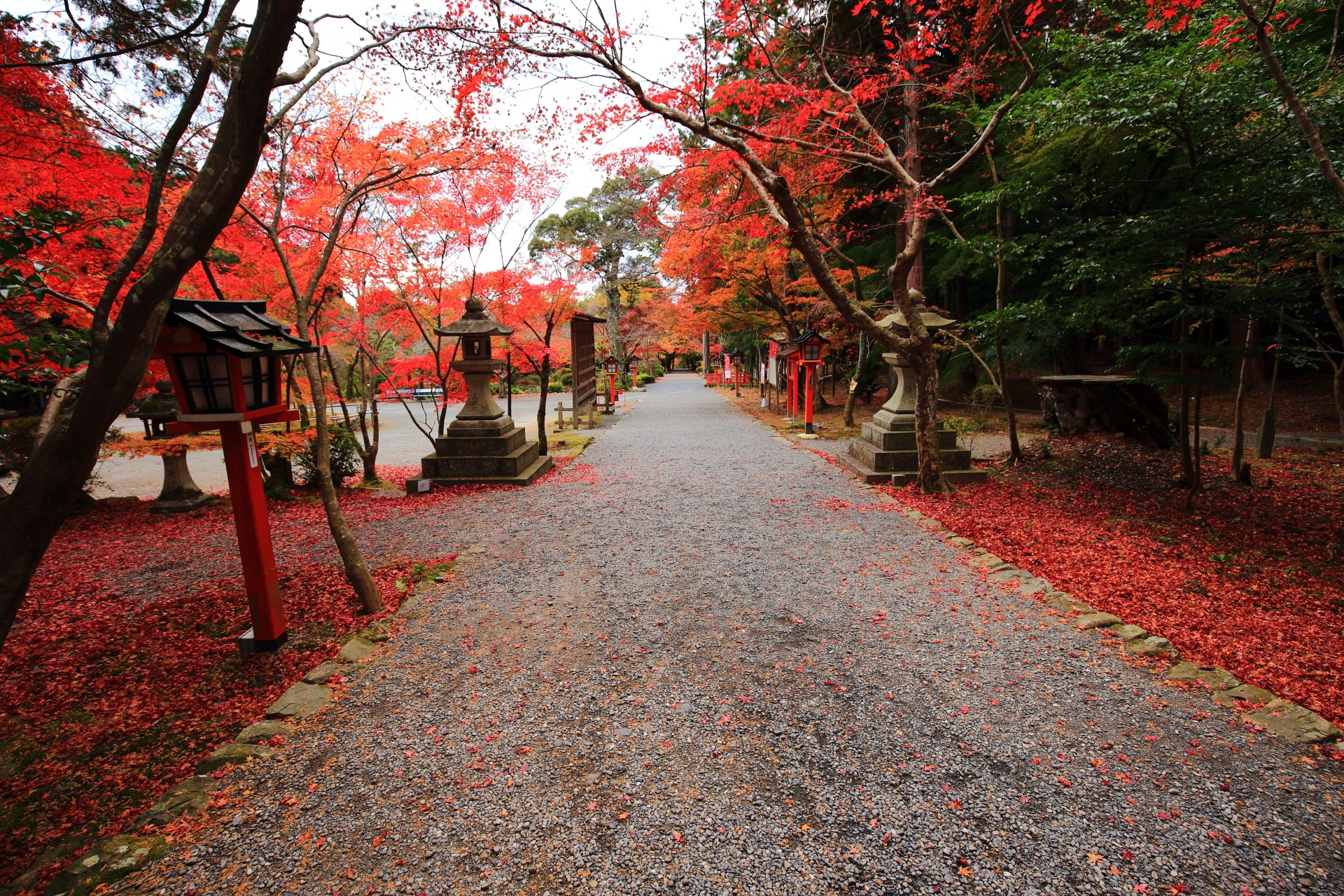 振り返ると続く大原野神社の長い紅葉の参道