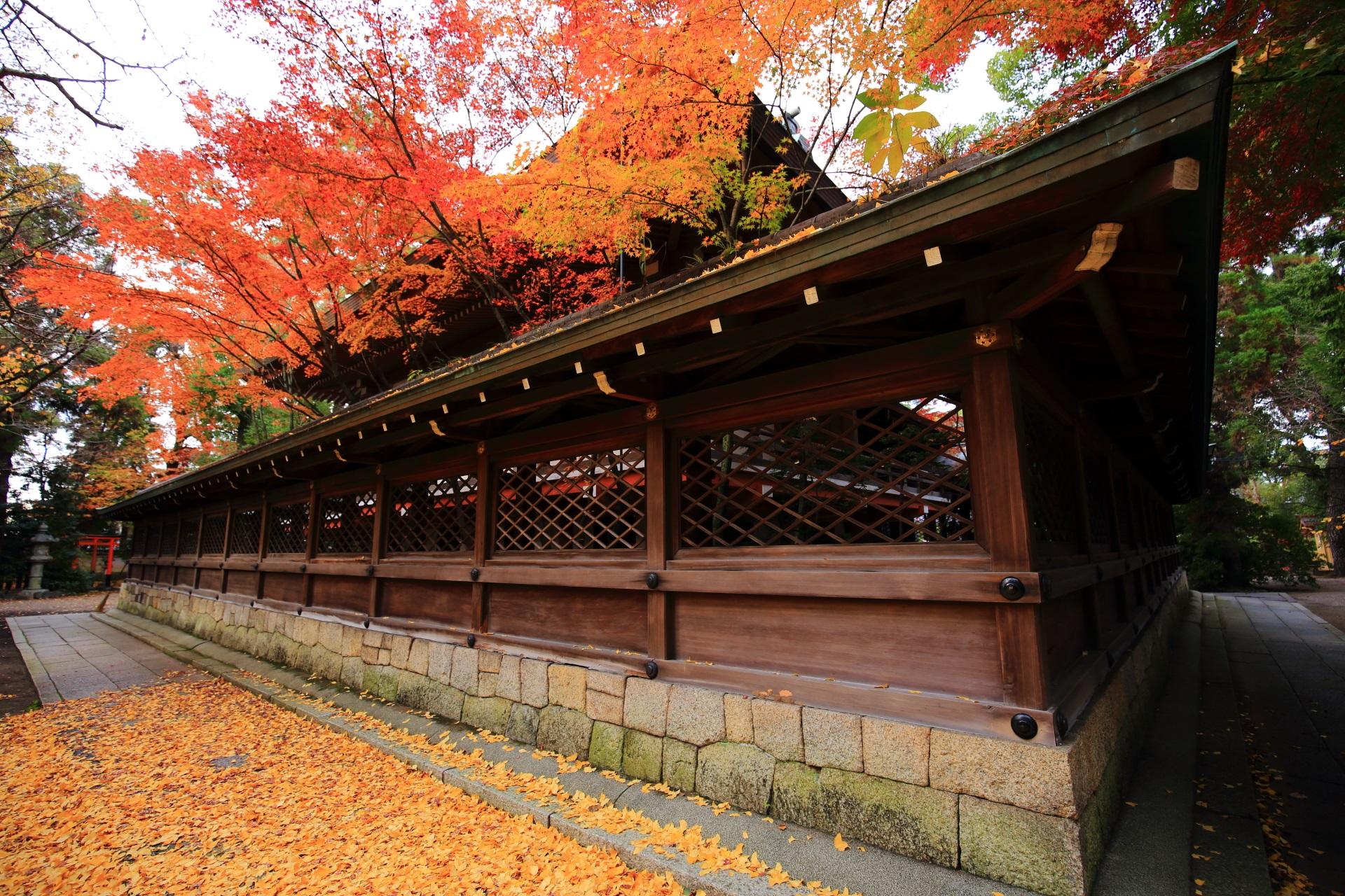 上御霊神社の本殿を彩る綺麗な多彩な紅葉