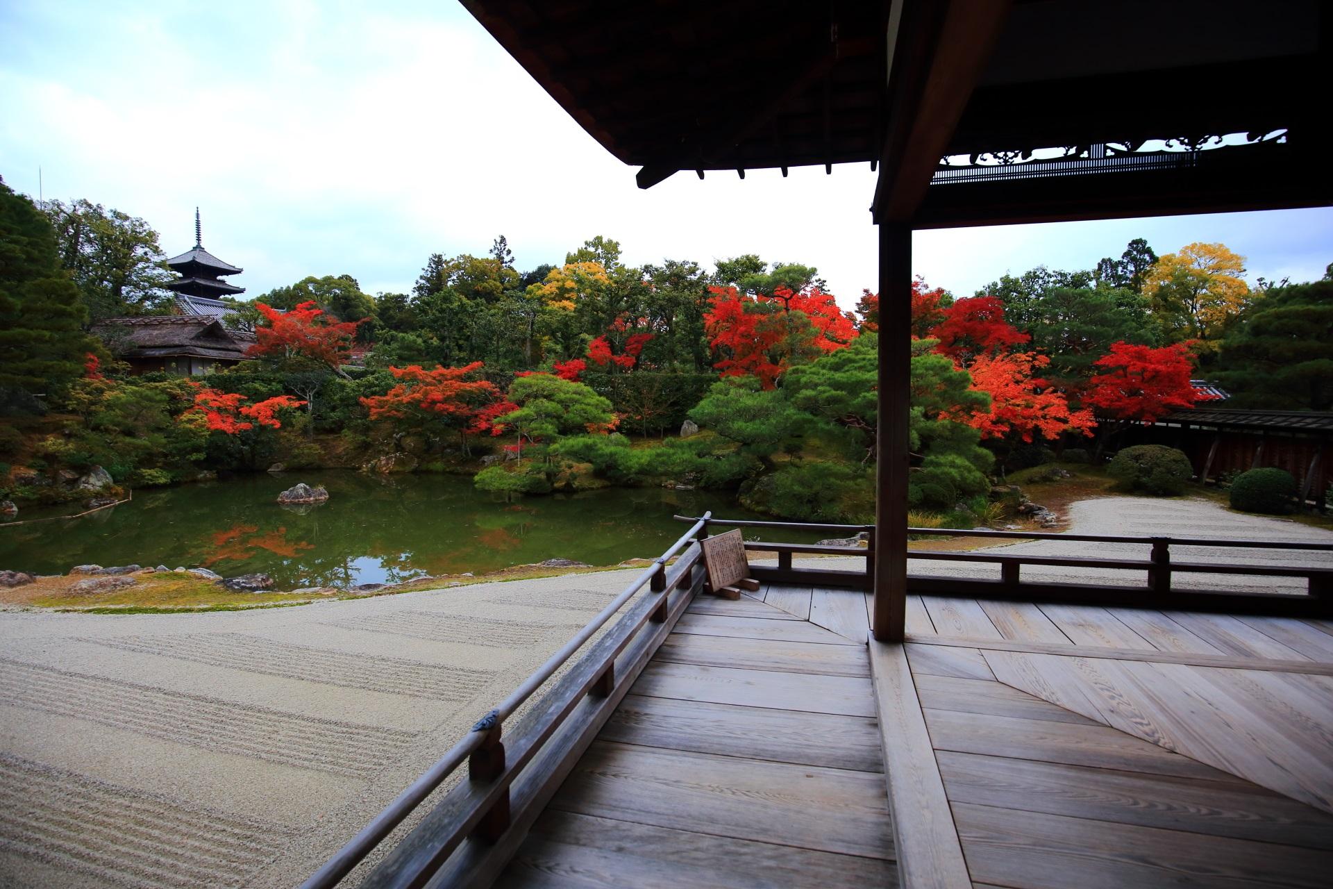 京都の中でも比較的早めに見ごろを向かえる紅葉の名所の仁和寺