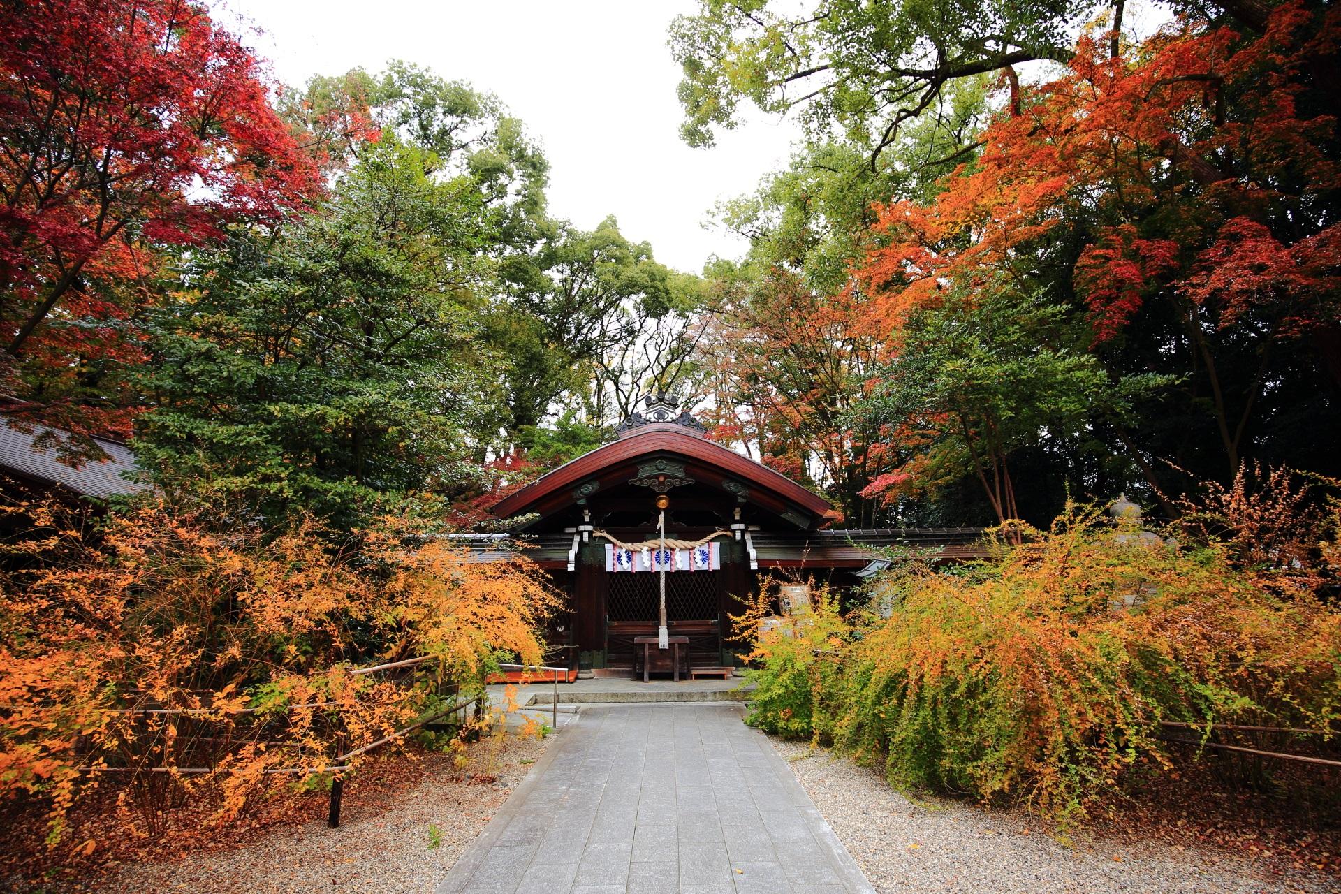 梨木神社の秋色に染まる中門と奥の本殿