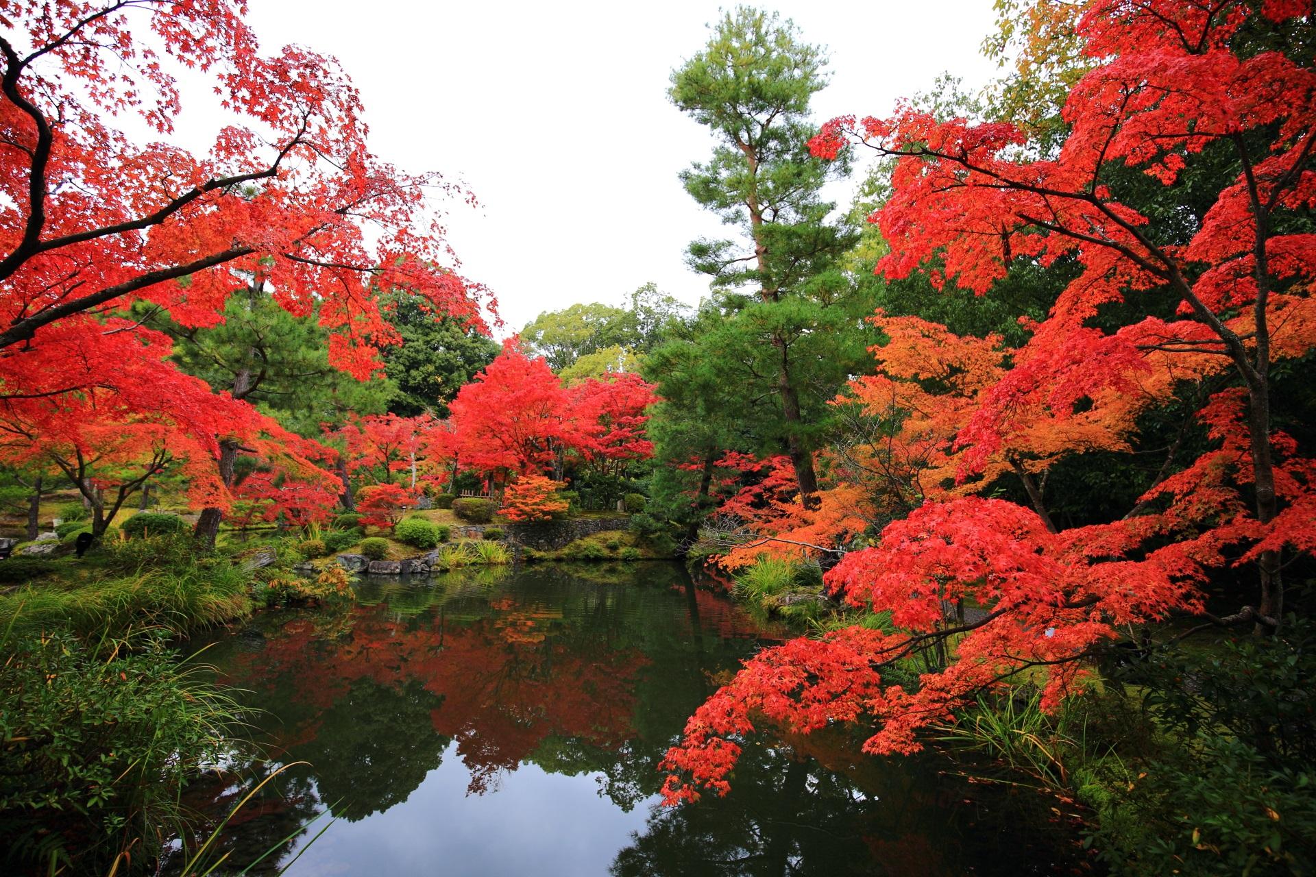 等持院の素晴らしい紅葉や庭園と秋色の情景