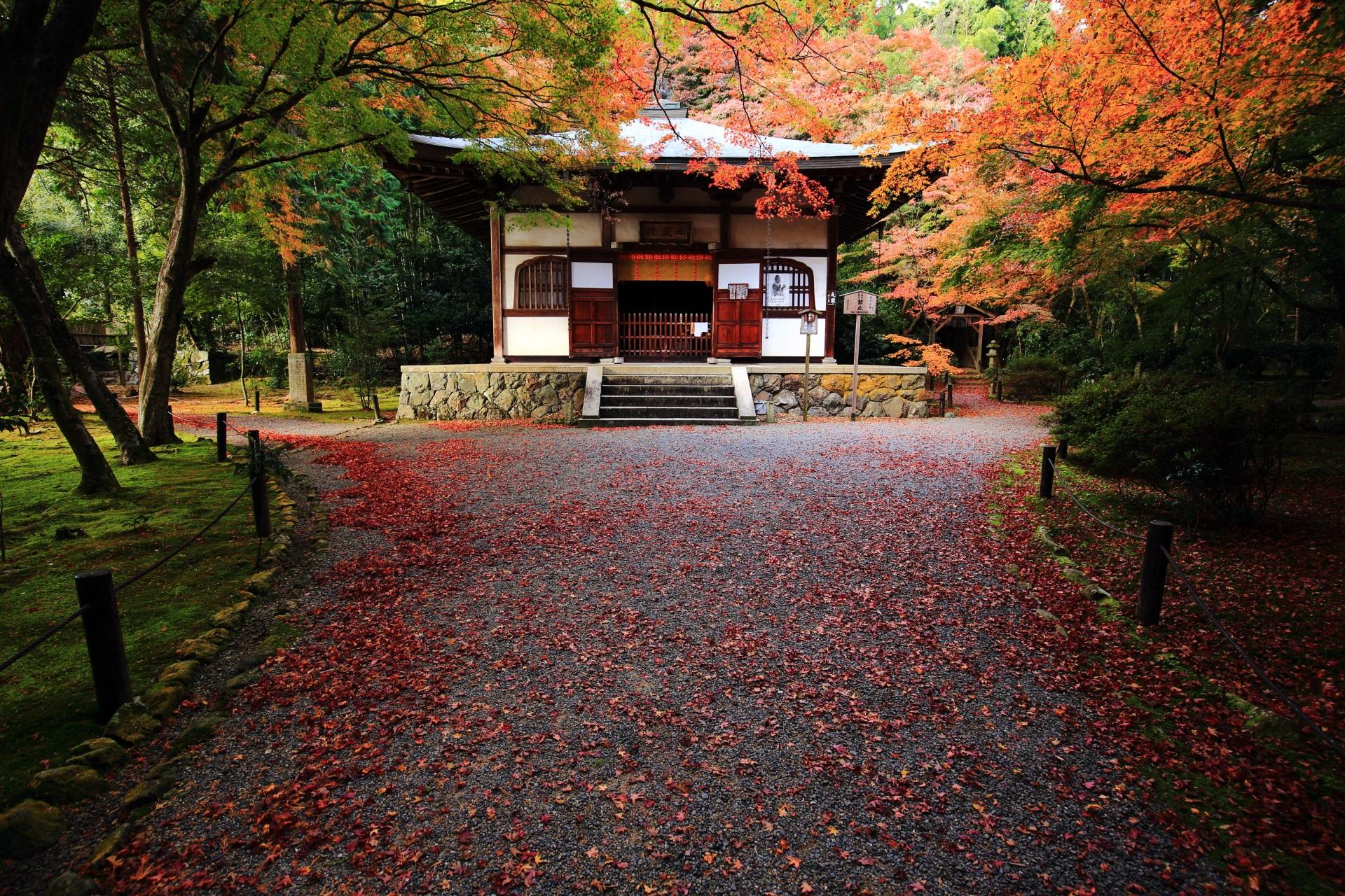 竹の寺地蔵院の情緒ある紅葉と竹と秋の情景