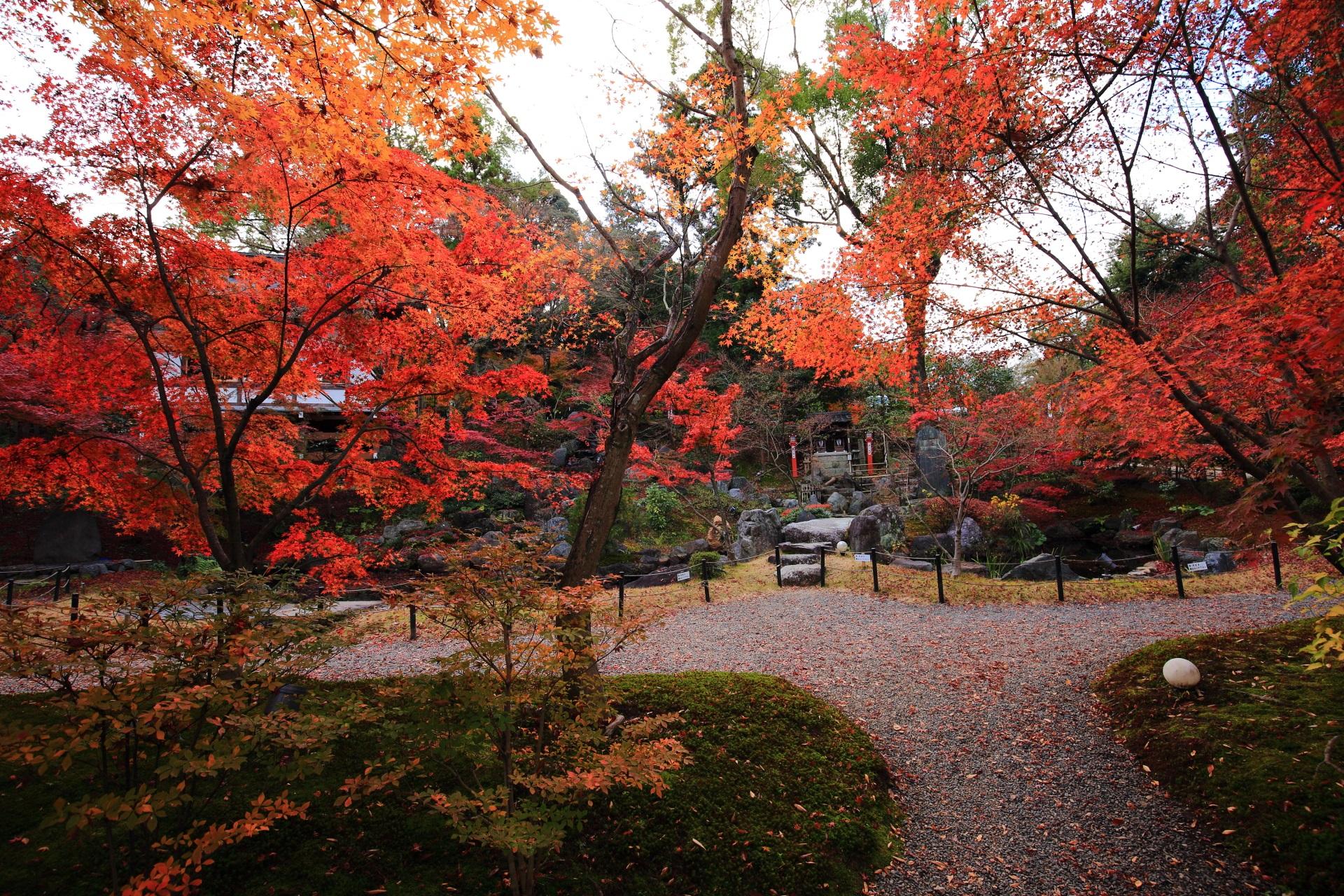 ふかふかの苔と水辺をつつむ艶やかな紅葉