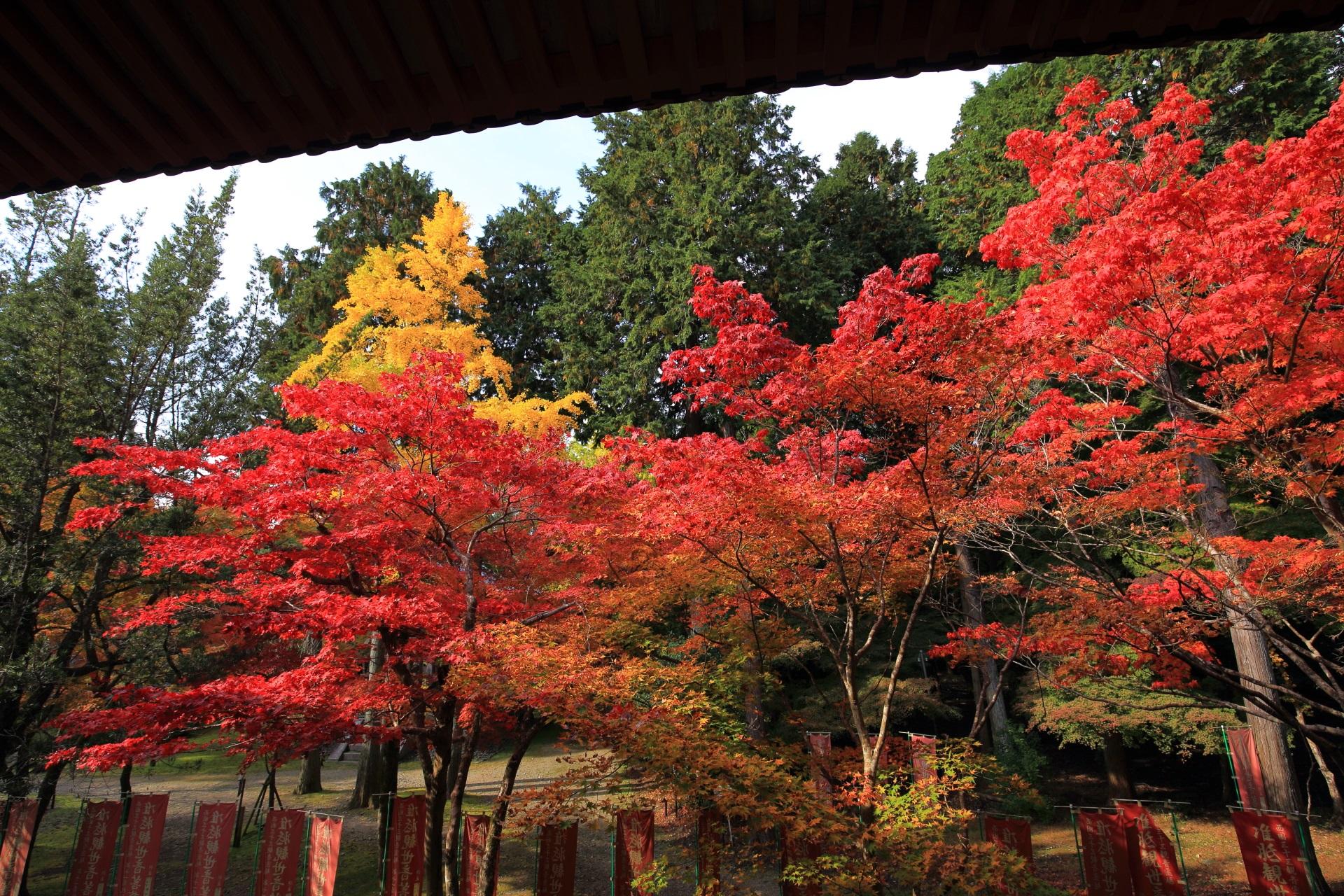 観音堂の横で溢れる多彩な秋色