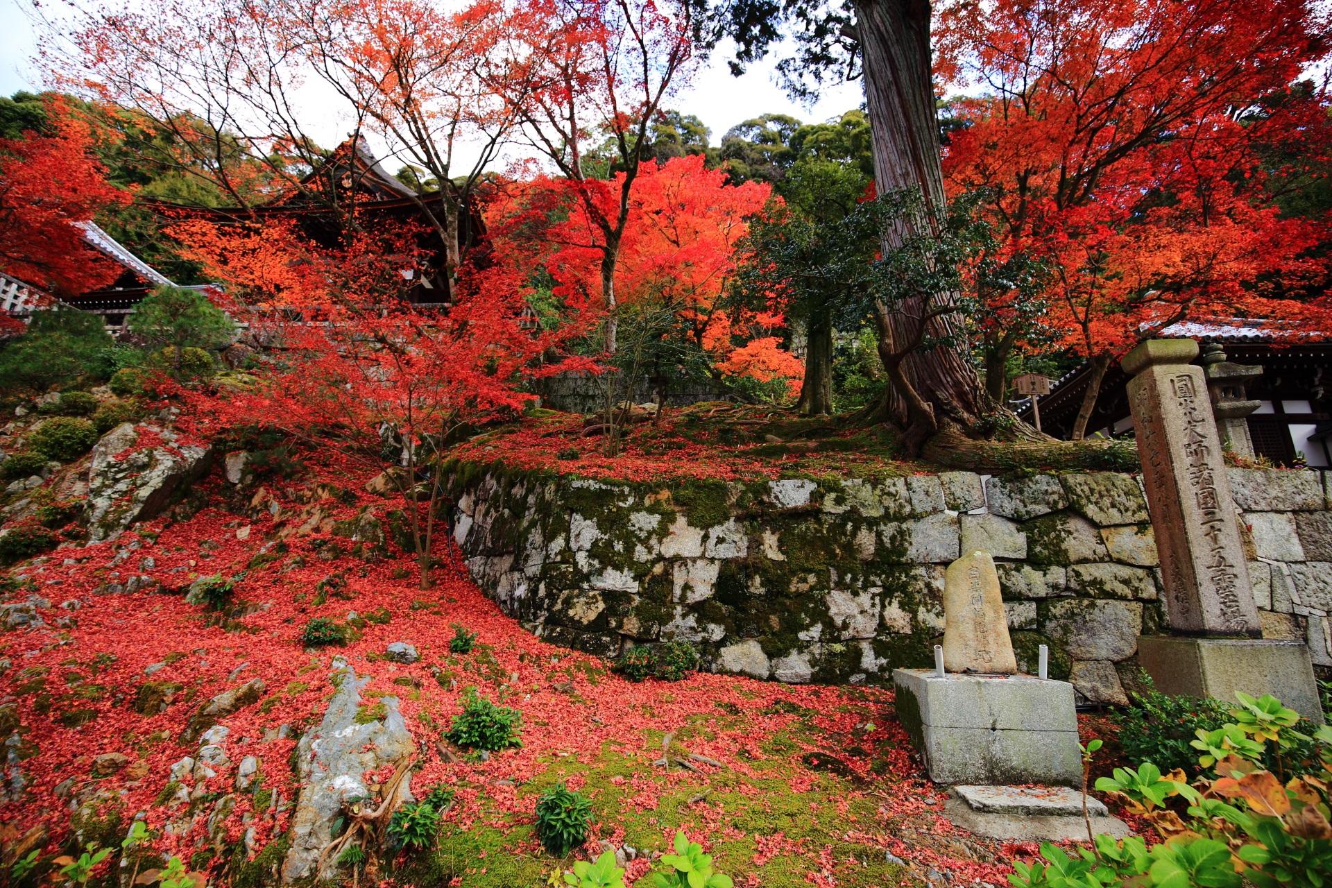 散り紅葉もいっぱいの秋に染まる法然上人御廟
