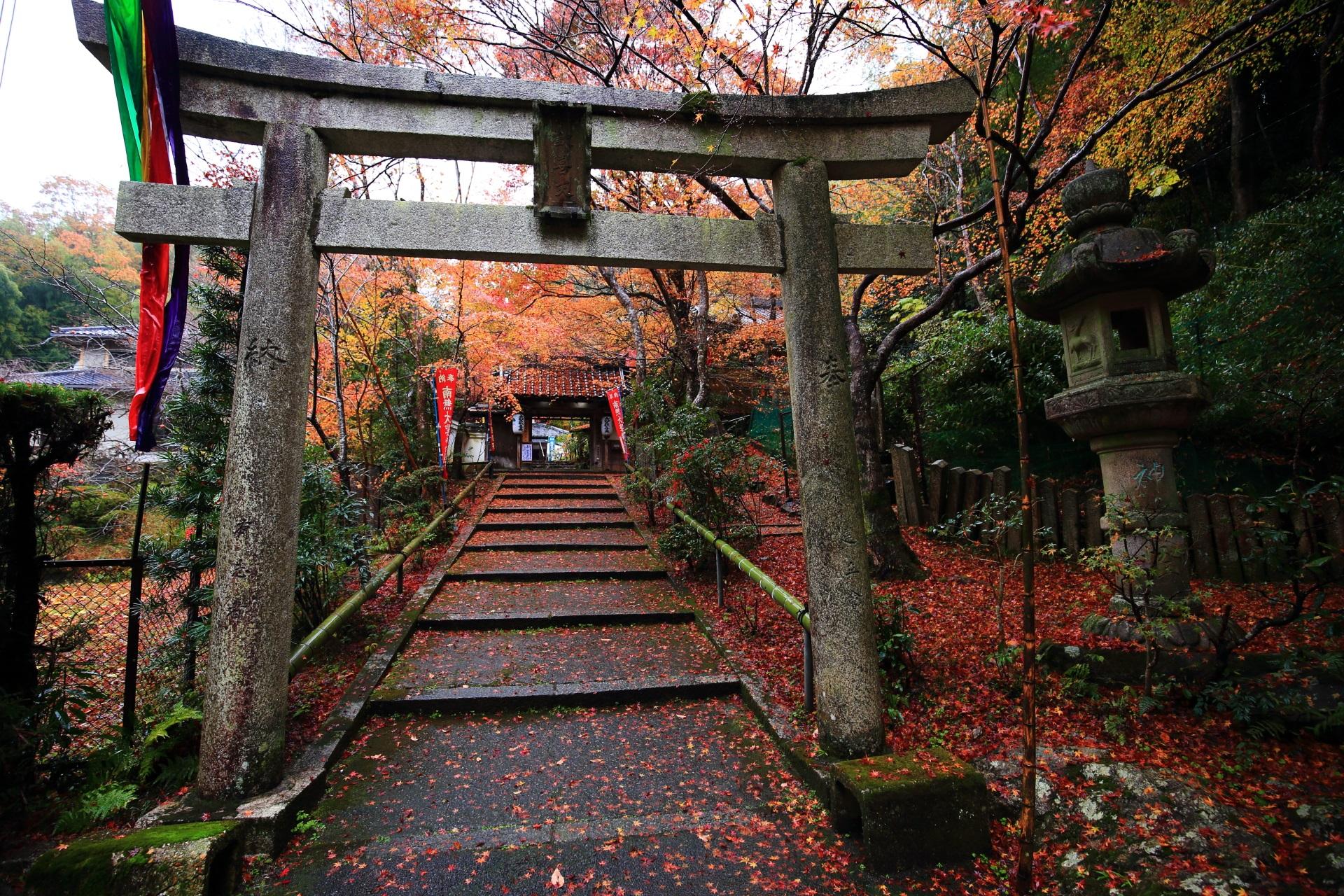 山科聖天双林院の鳥居と参道の紅葉や散りもみじ