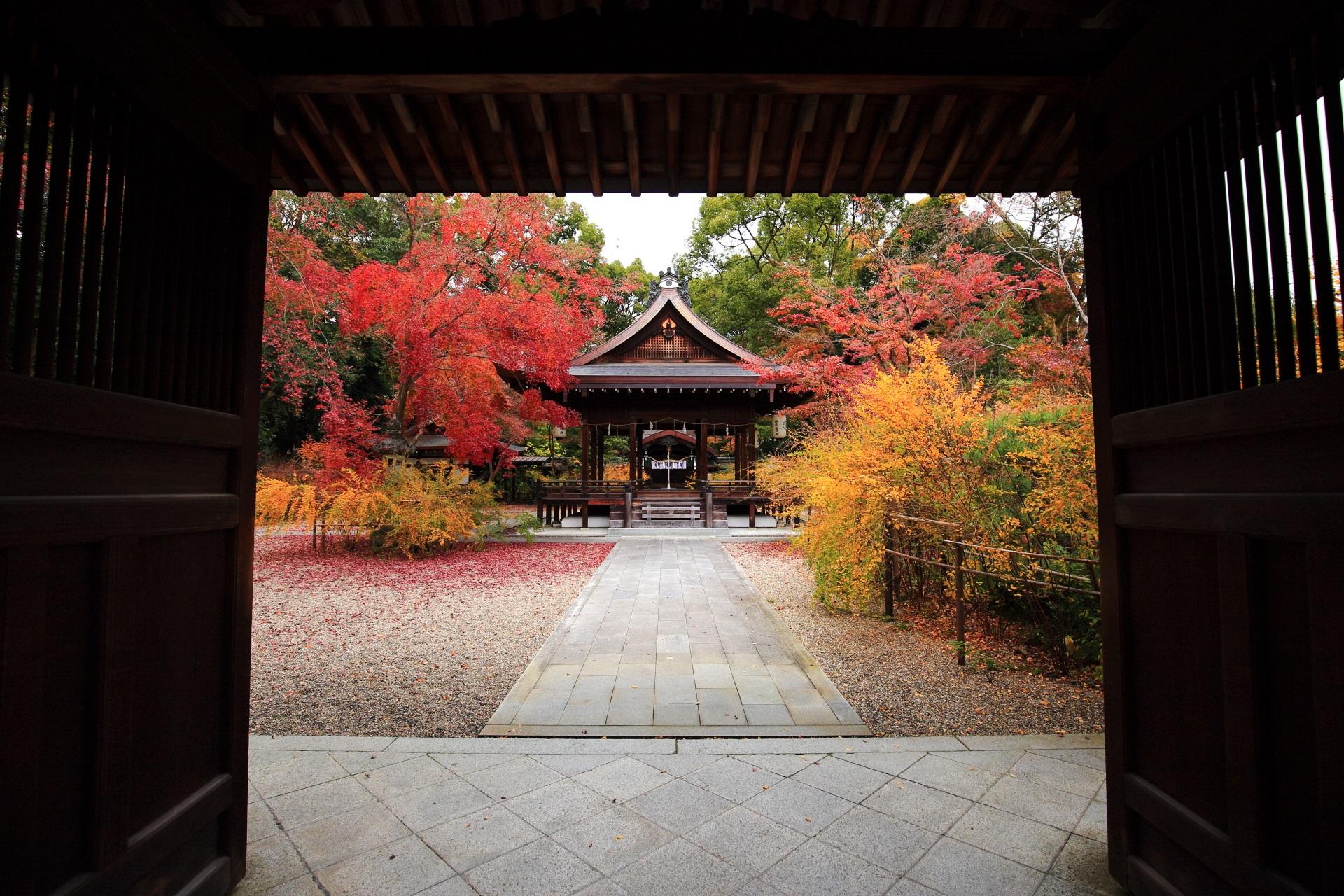 梨木神社の神門下から眺めた額縁のもみじと萩の紅葉