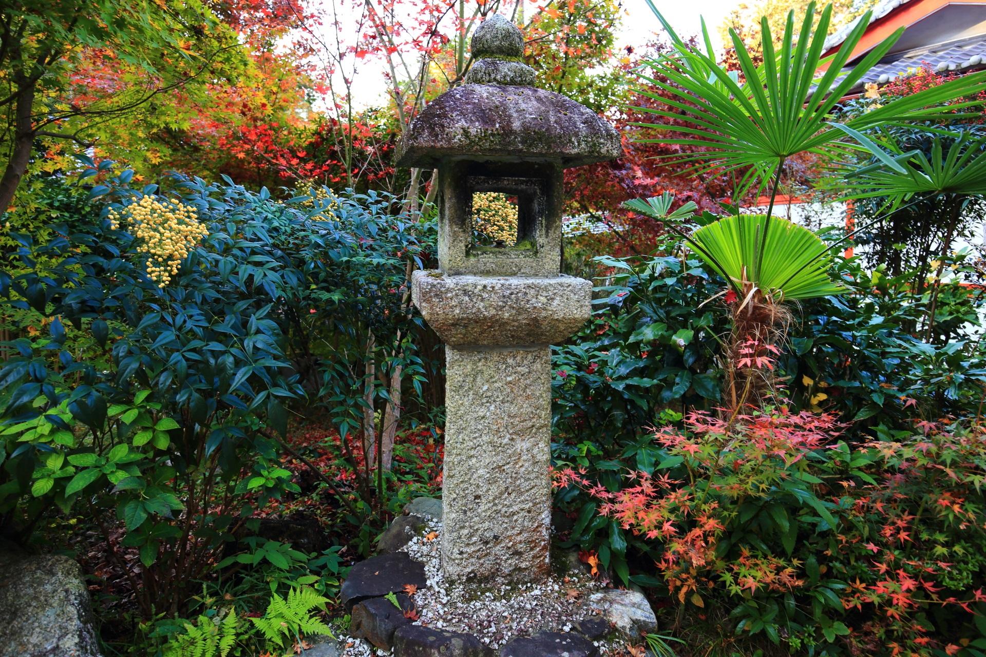 鷺森神社のもみじや南天やシダなどの植物に囲まれる燈籠