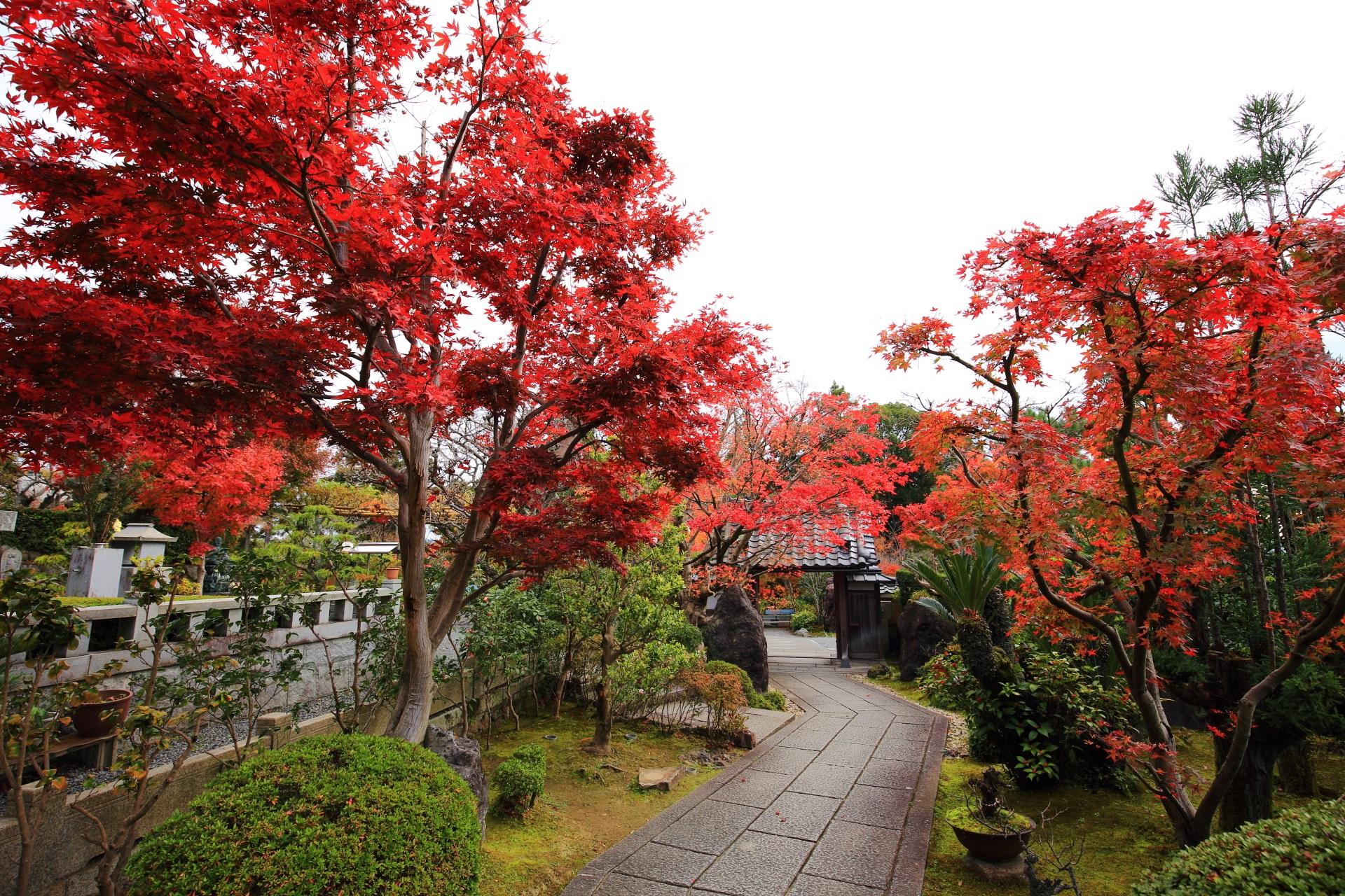 京都洛西の隠れた紅葉の名所の正法寺