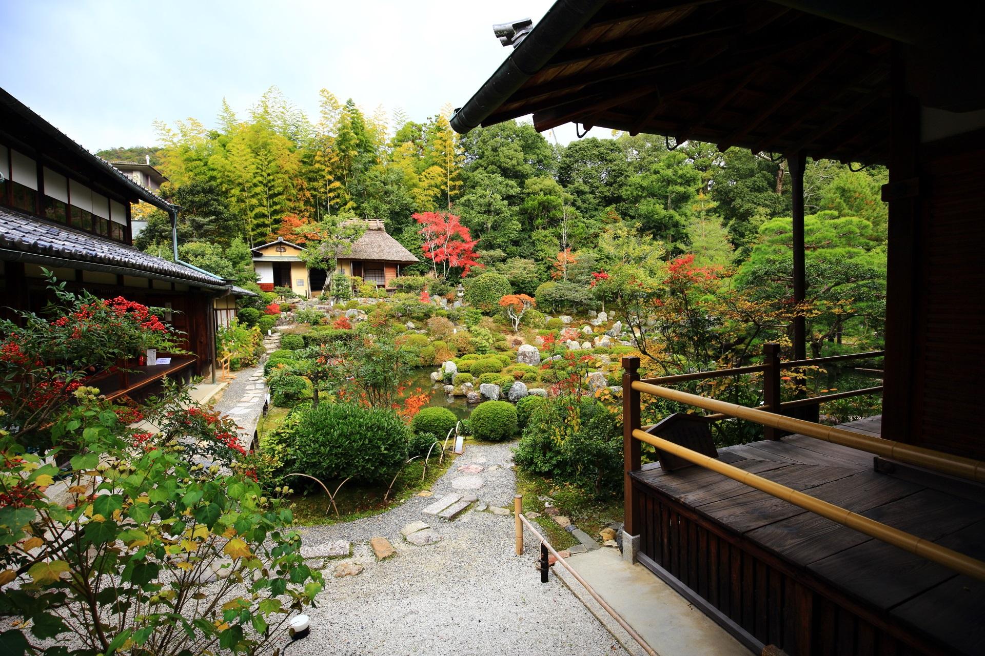 等持院の西庭と秋の芙蓉池