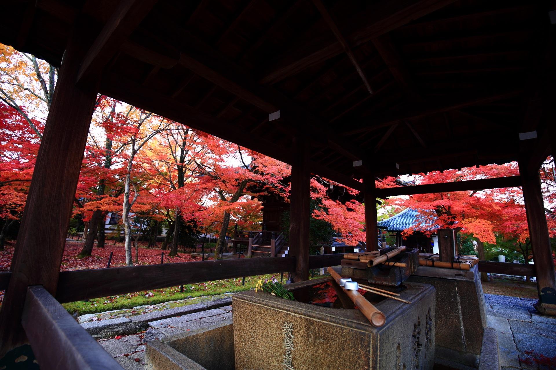 真如堂の手水舎から眺めた境内の風情ある紅葉
