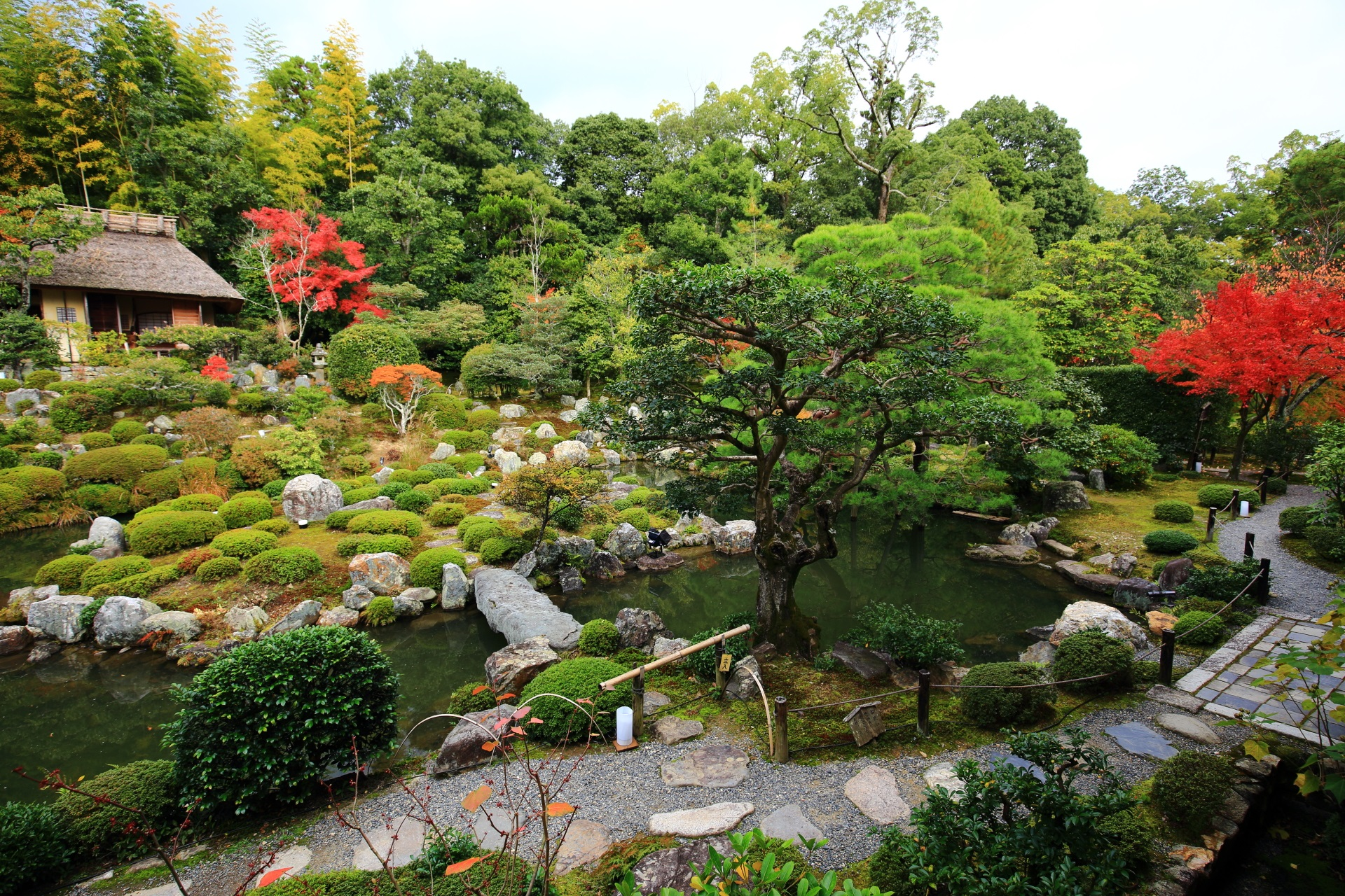 等持院の多種多様な緑と水の美しい庭園
