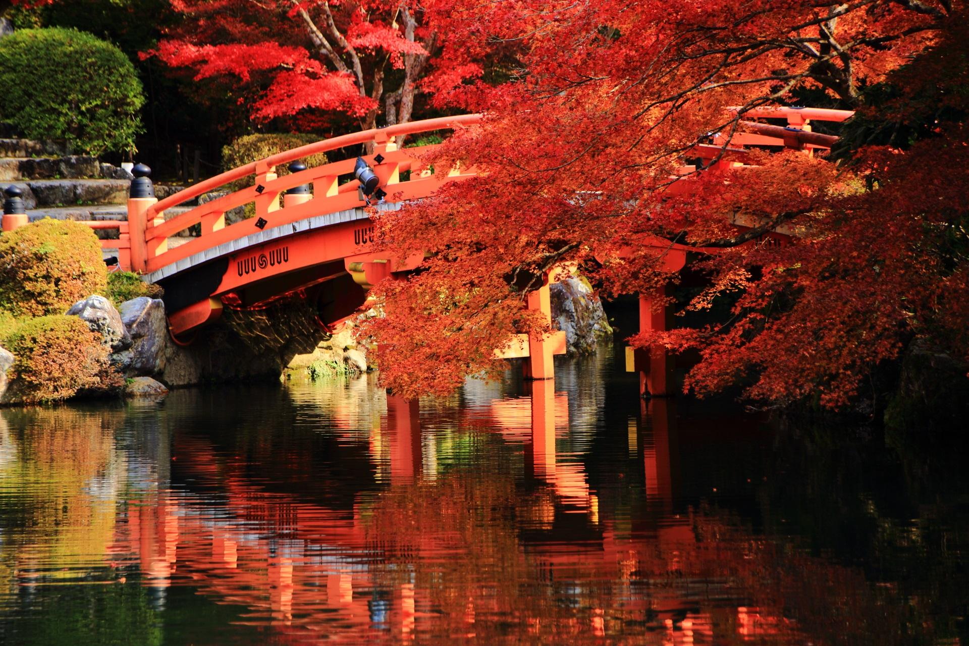 水面を彩る赤い紅葉と朱色の橋