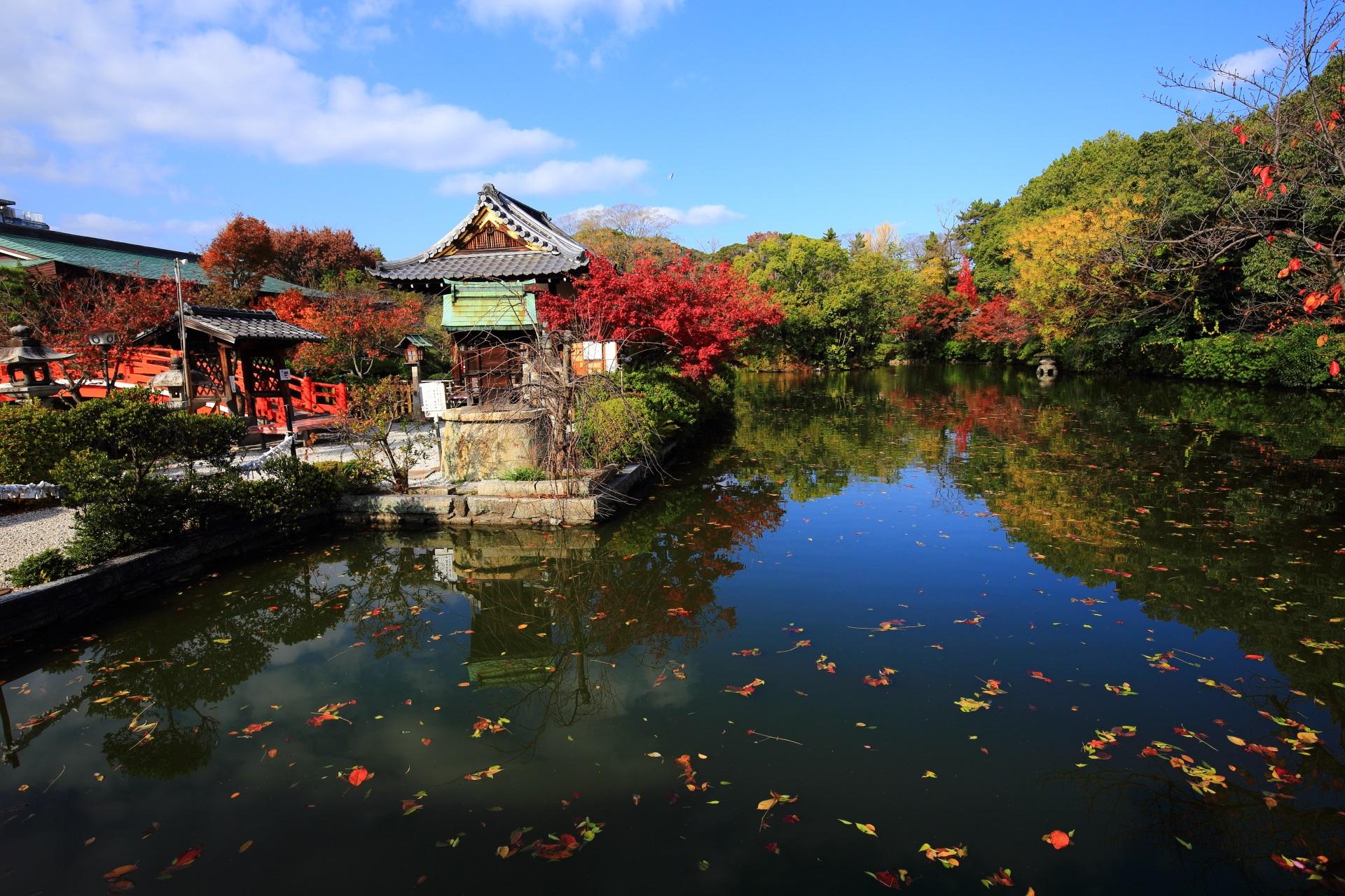 神泉苑の素晴らしい紅葉や水鏡と秋の情景