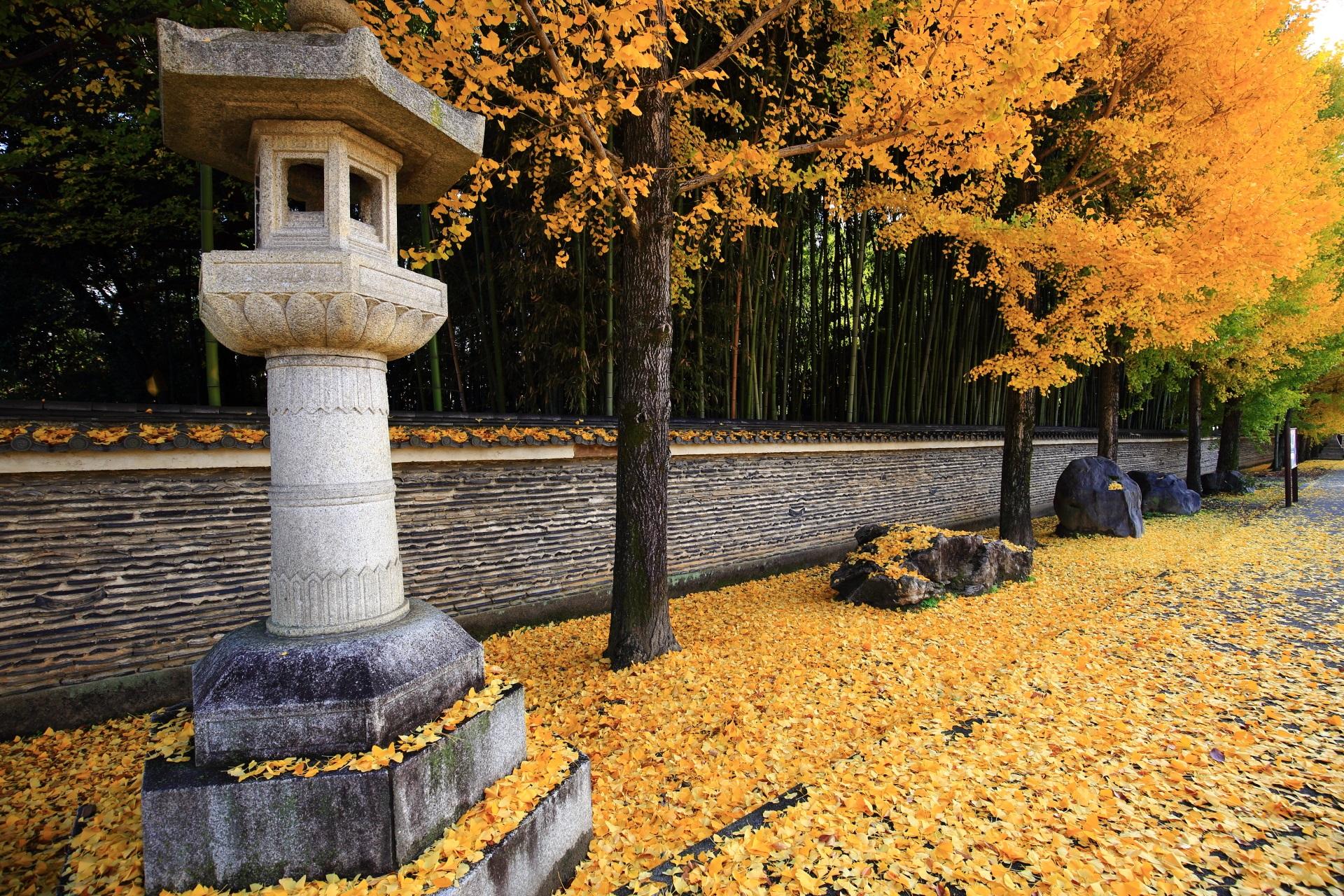 今宮神社の参道の銀杏と散り銀杏
