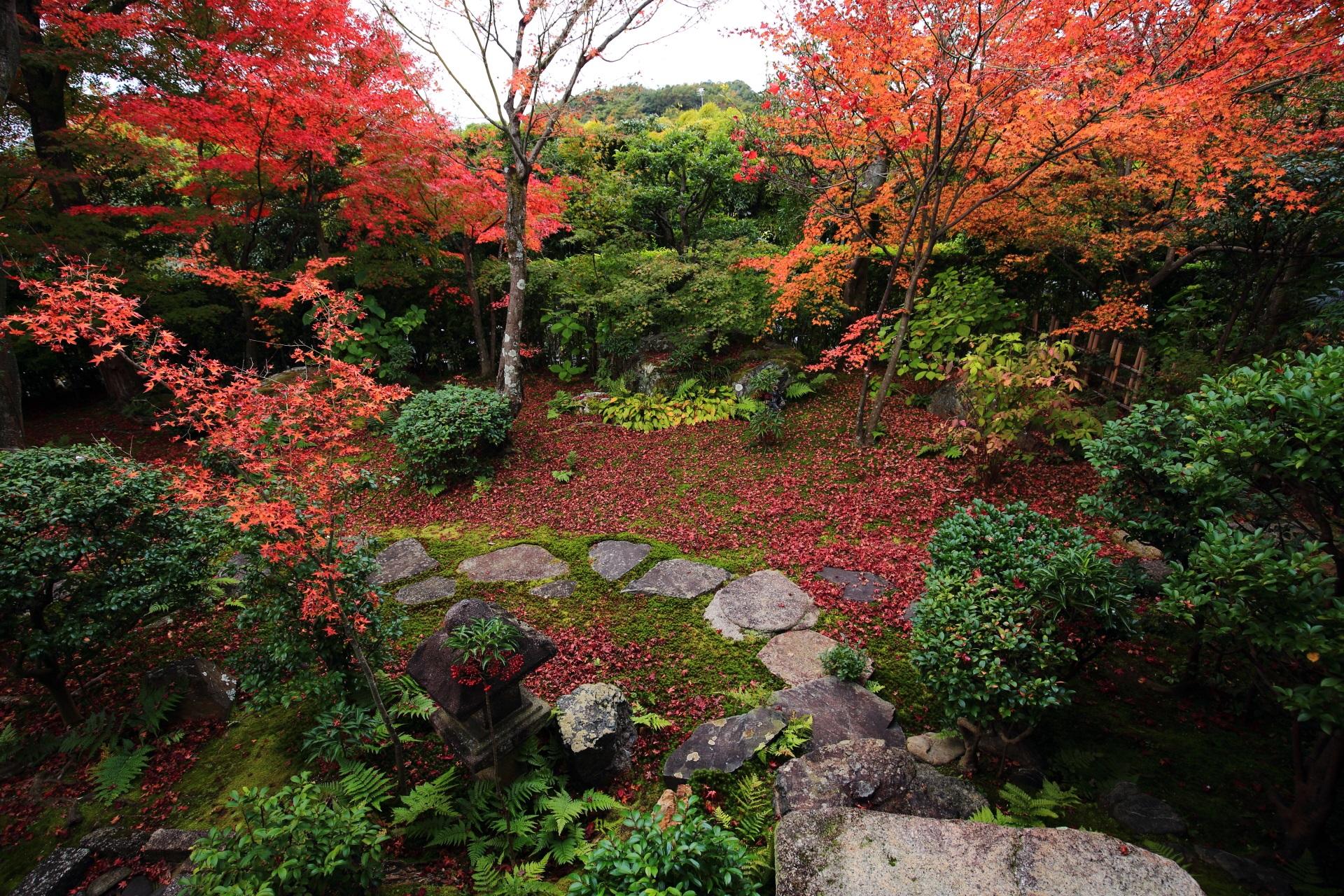 散りもみじにつつまれた苔と情緒ある飛び石の参道