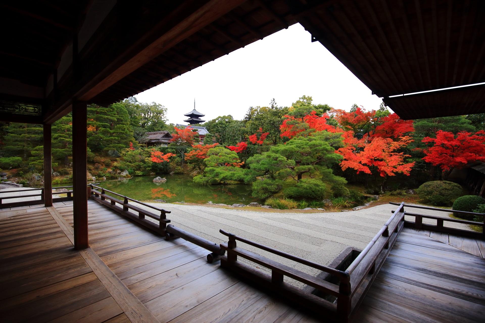 仁和寺の素晴らしい紅葉と秋の情景
