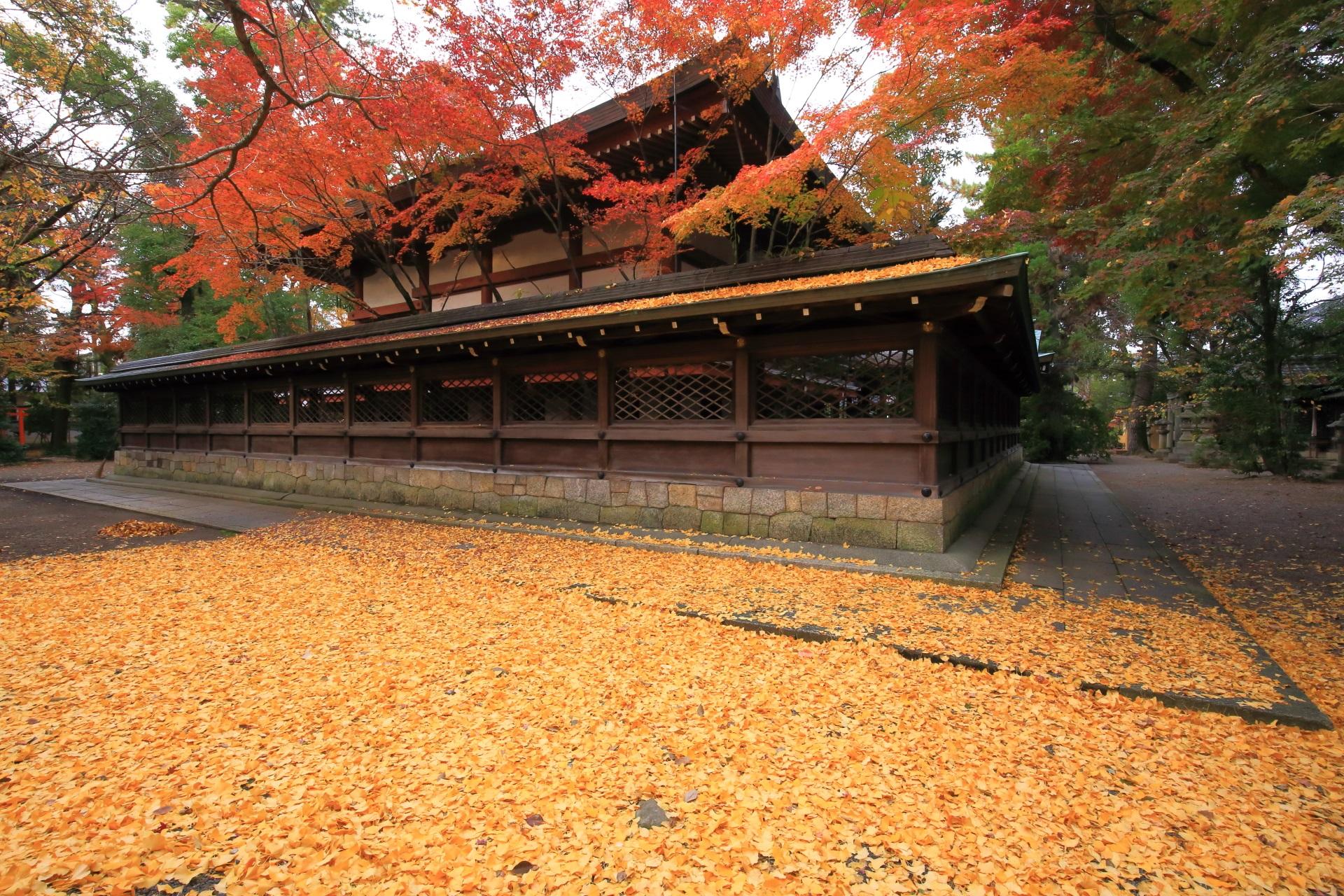 何度見ても凄い上御霊神社の秋の情景