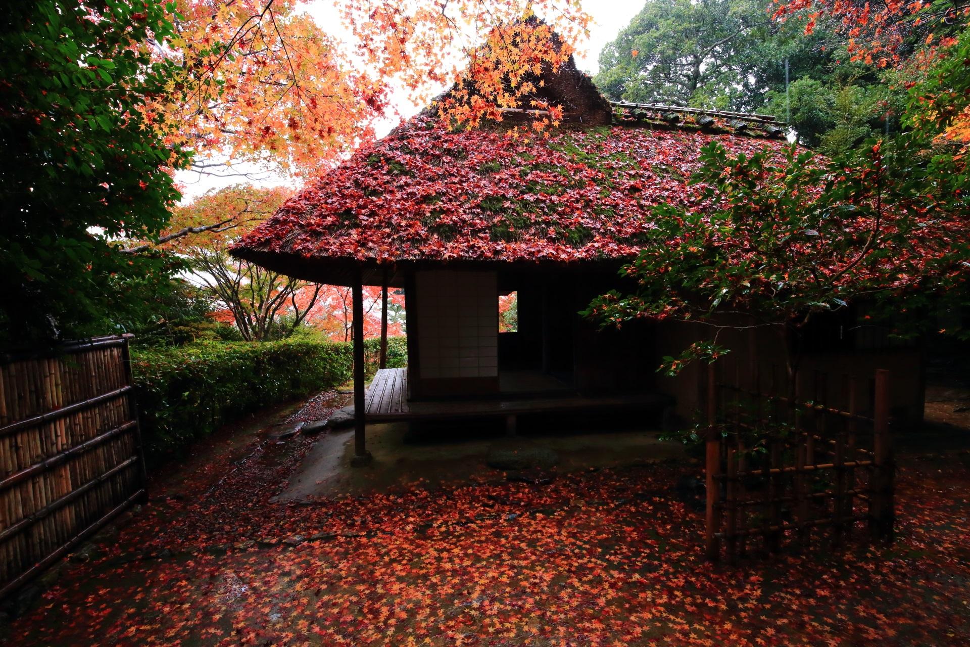 散り紅葉が凄い芭蕉庵