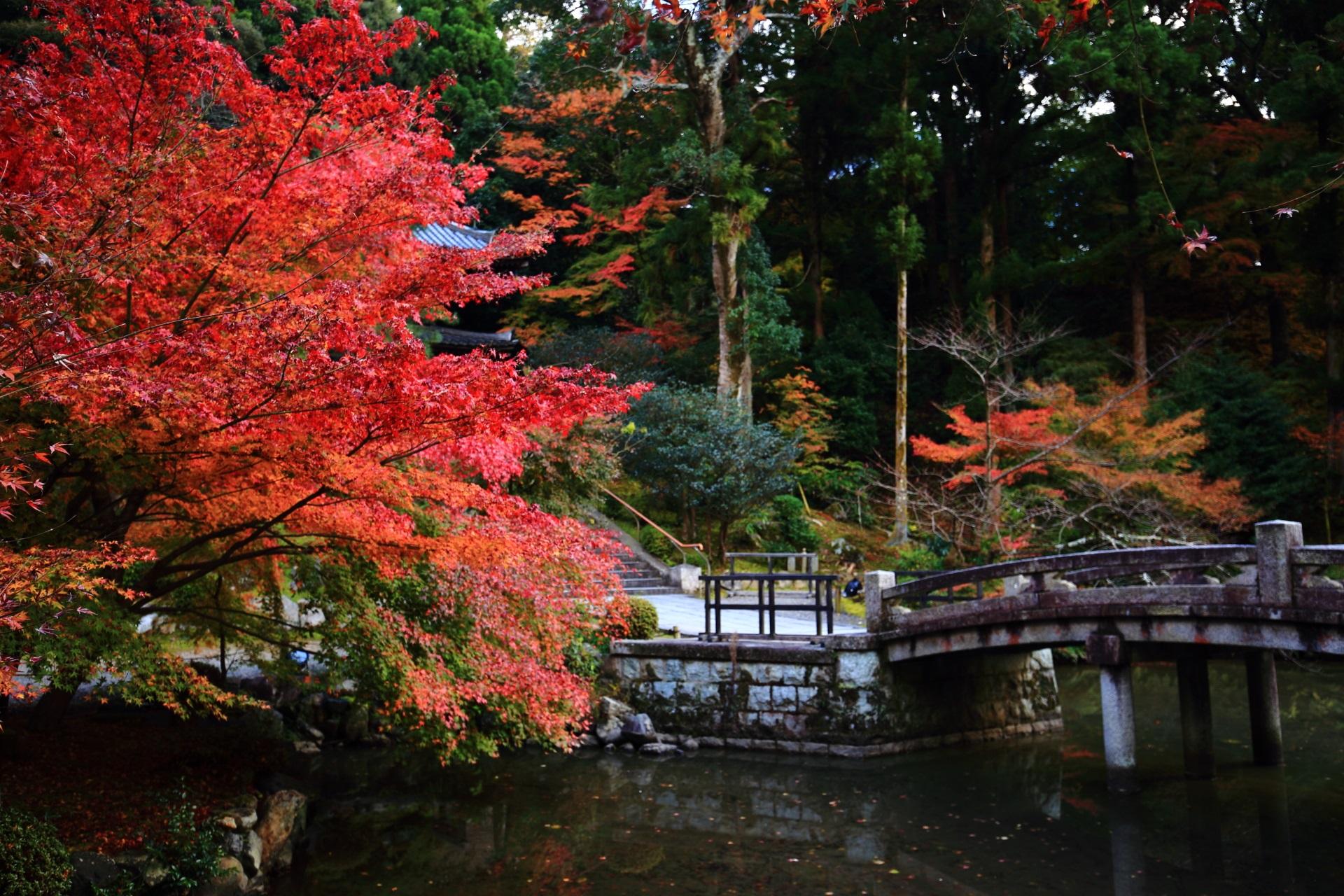 知恩院の納骨堂と池を彩る鮮やかな紅葉