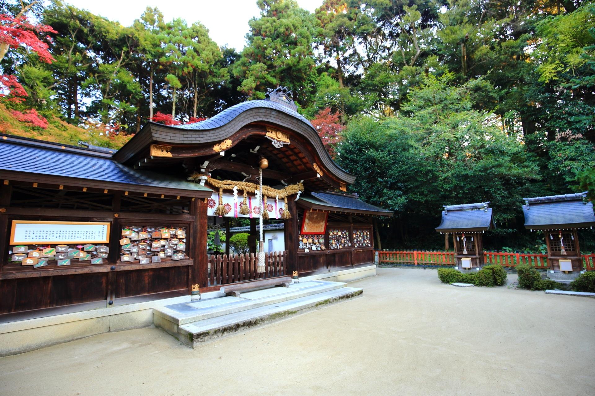 鷺森神社の多種多様な緑の溢れる境内