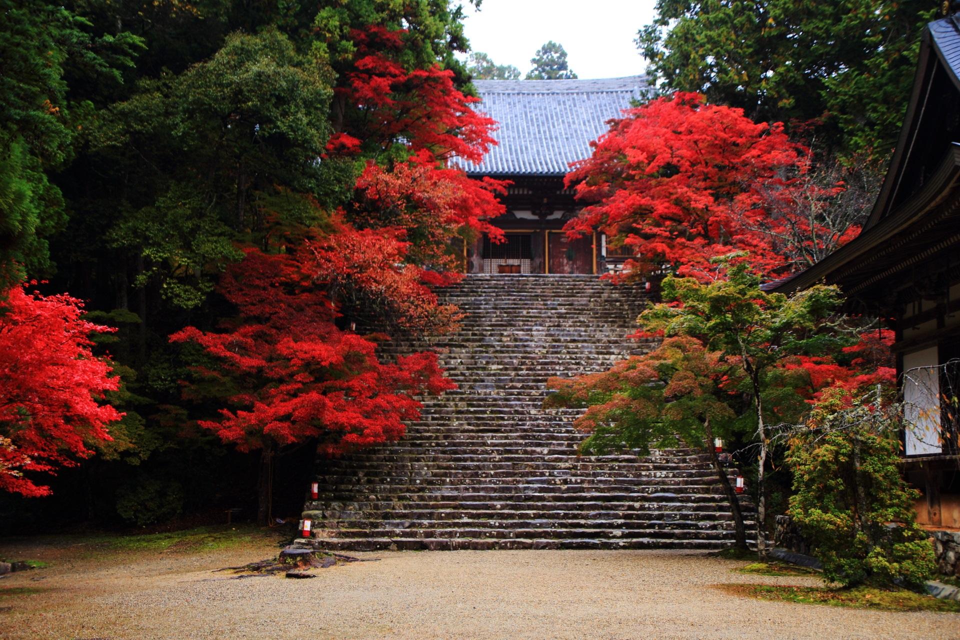 神護寺 紅葉 京都の紅葉は高雄から