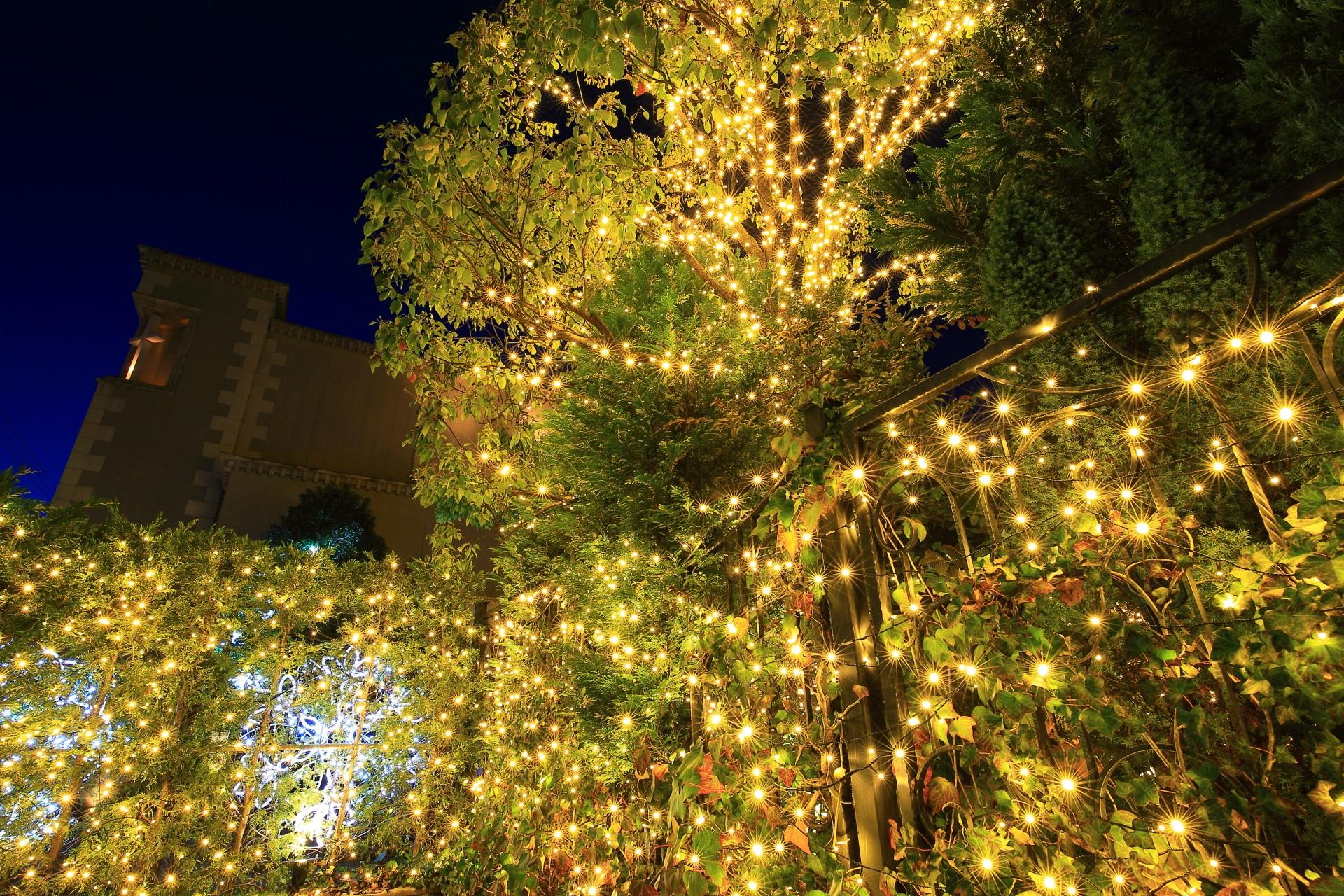 北山ル・アンジェ教会の煌びやかな冬の輝き