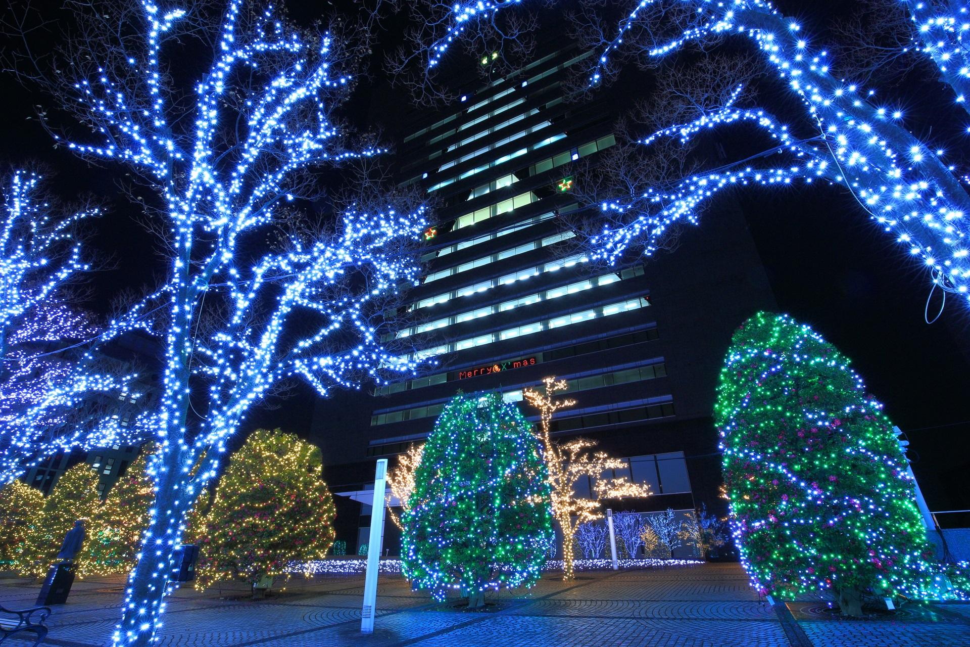 illumination kyocera in Kyoto,Japan