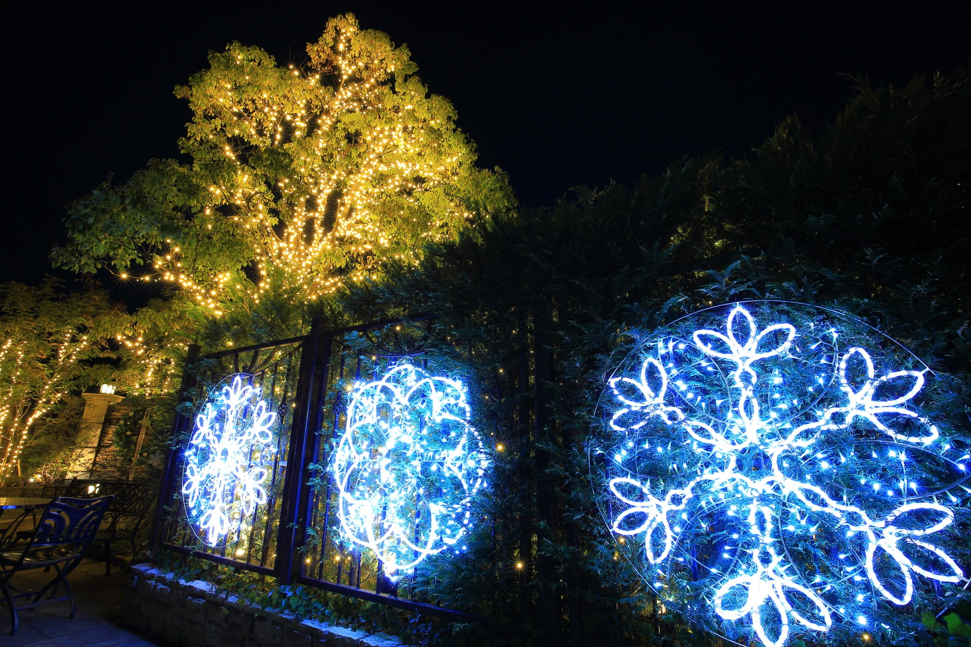 Kyoto kitayama-wedding-street illumination