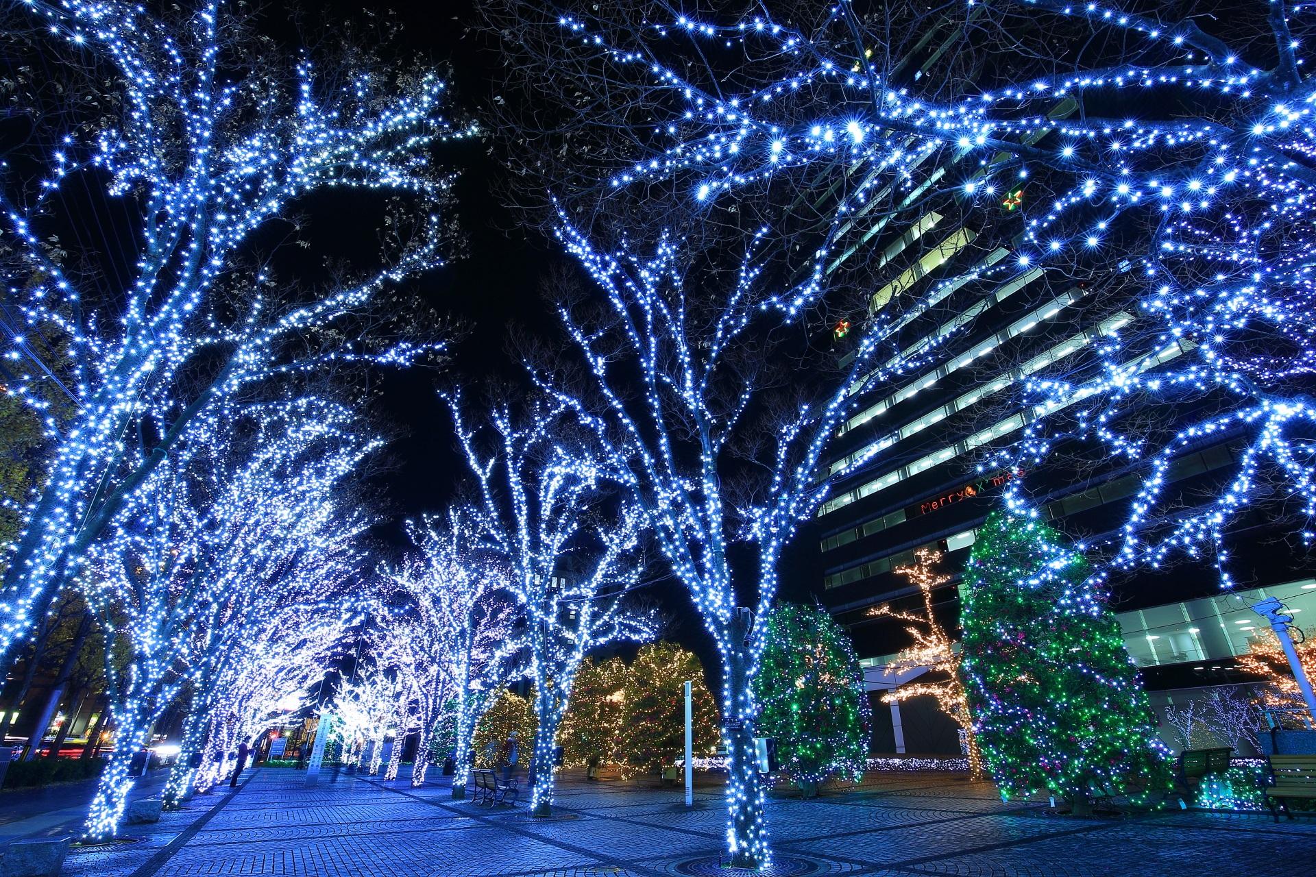 高画質 写真 京セラ本社 イルミネーション