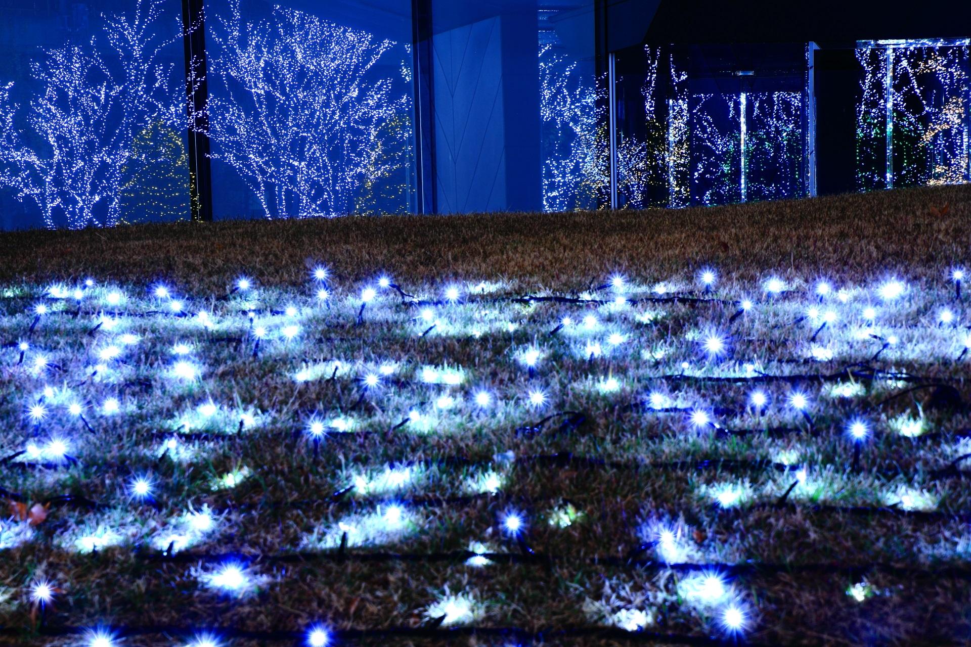 京セラ本社のガラスに反射する灯り