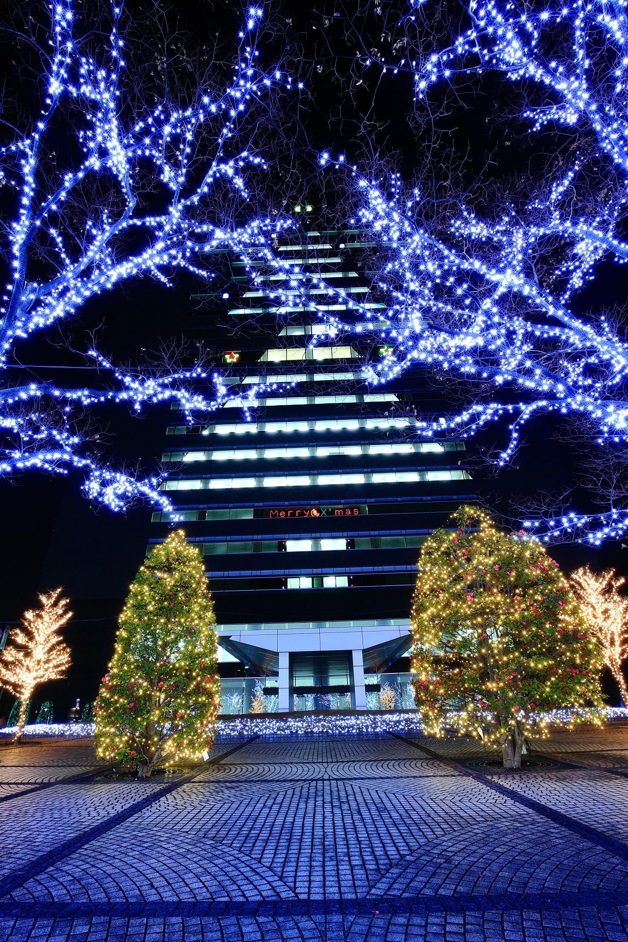 20階建の本社ビルの照明を使ったクリスマスツリー