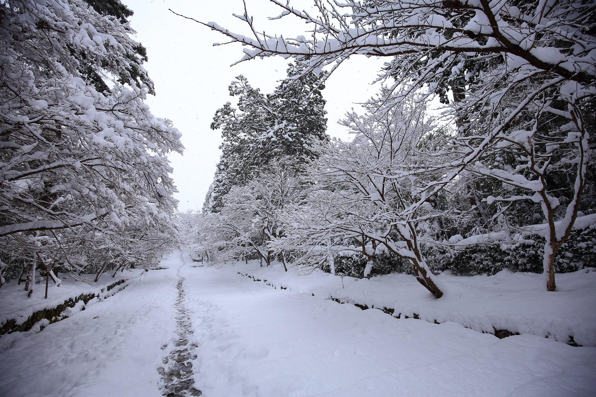 二尊院の足跡の残る雪景色