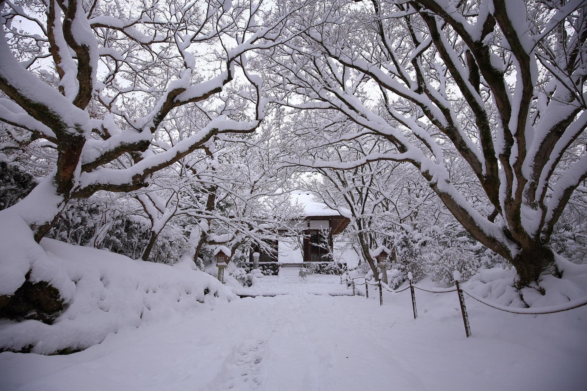 常寂光寺の山門の雪景色