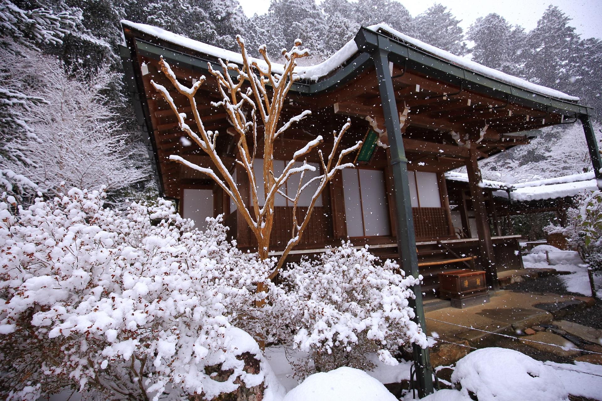 白い雪につつまれた大原の寂光院本堂