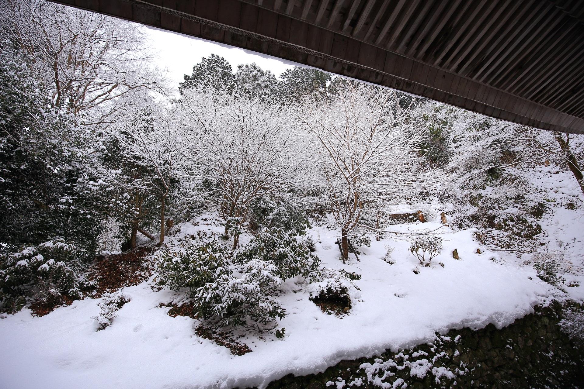 勝林院の幻想的な雪景色