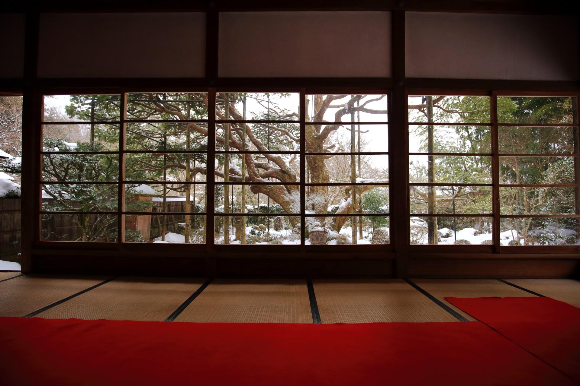 雪が強くなるとガラス戸を締める宝泉院の額物庭園