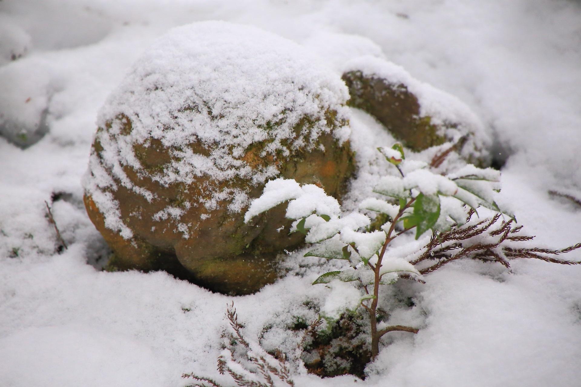 わらべ地蔵の雪景色
