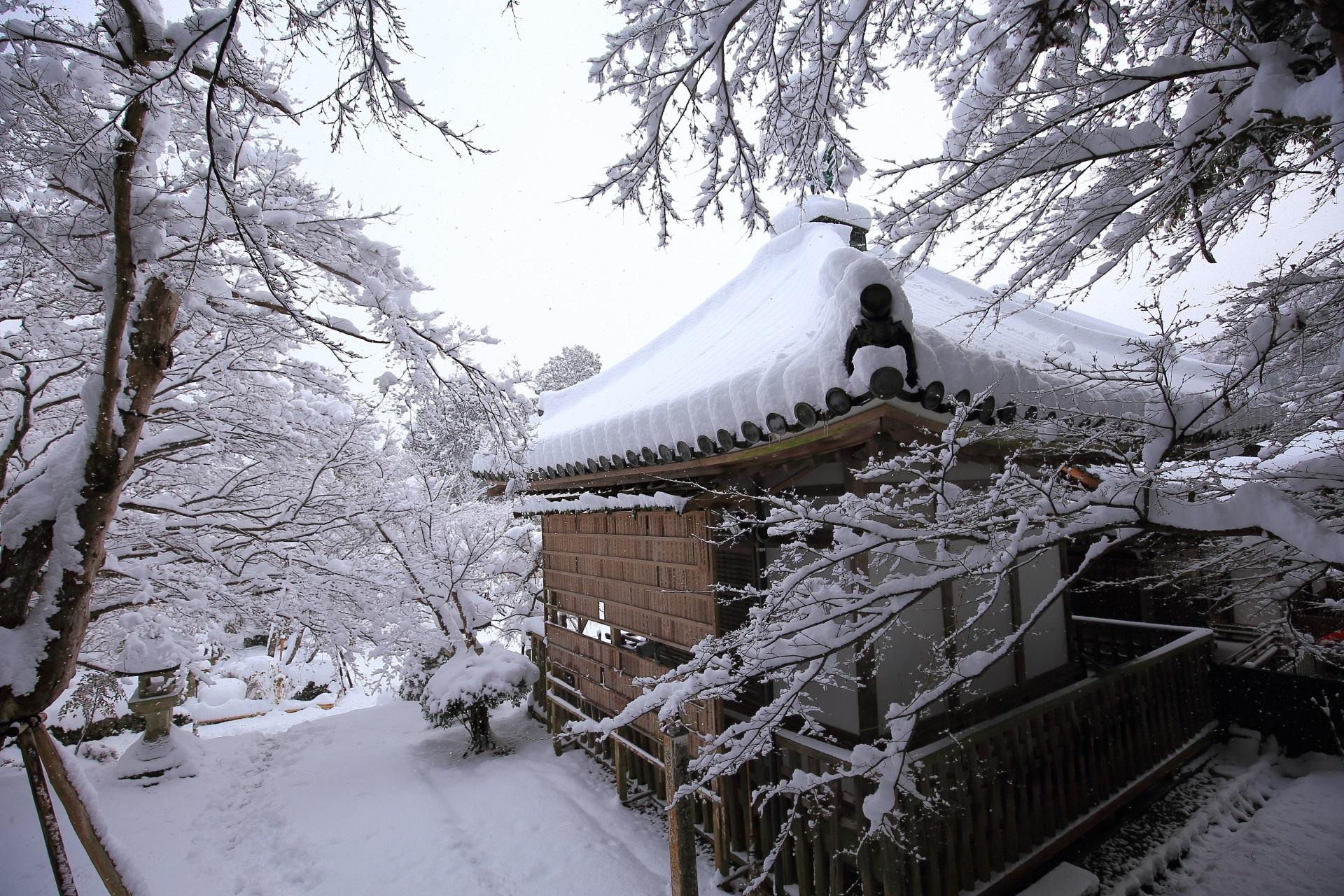 二尊院 高画質 写真 冬
