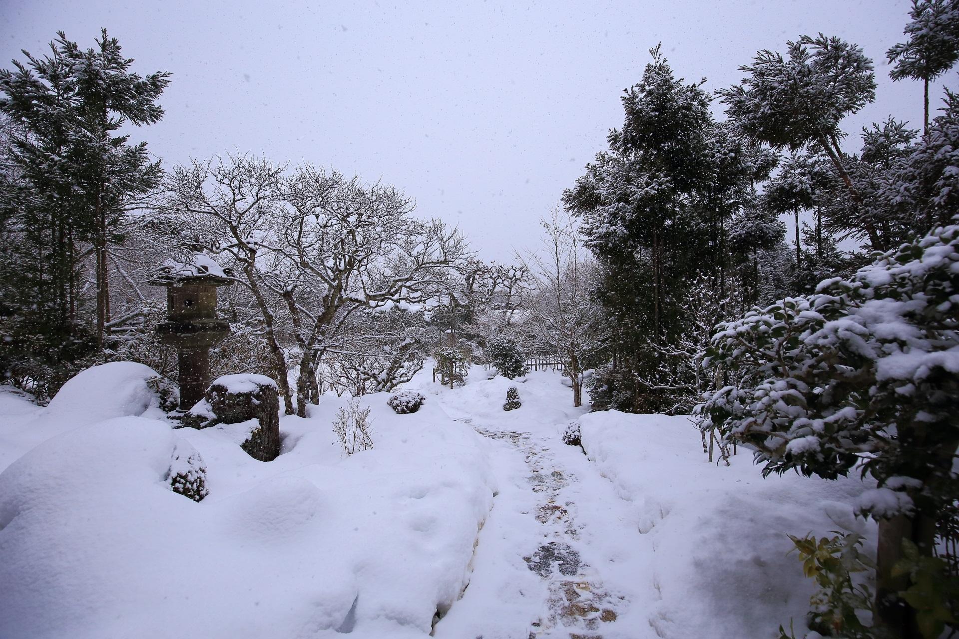 雪につつまれた広々した実光院の庭園