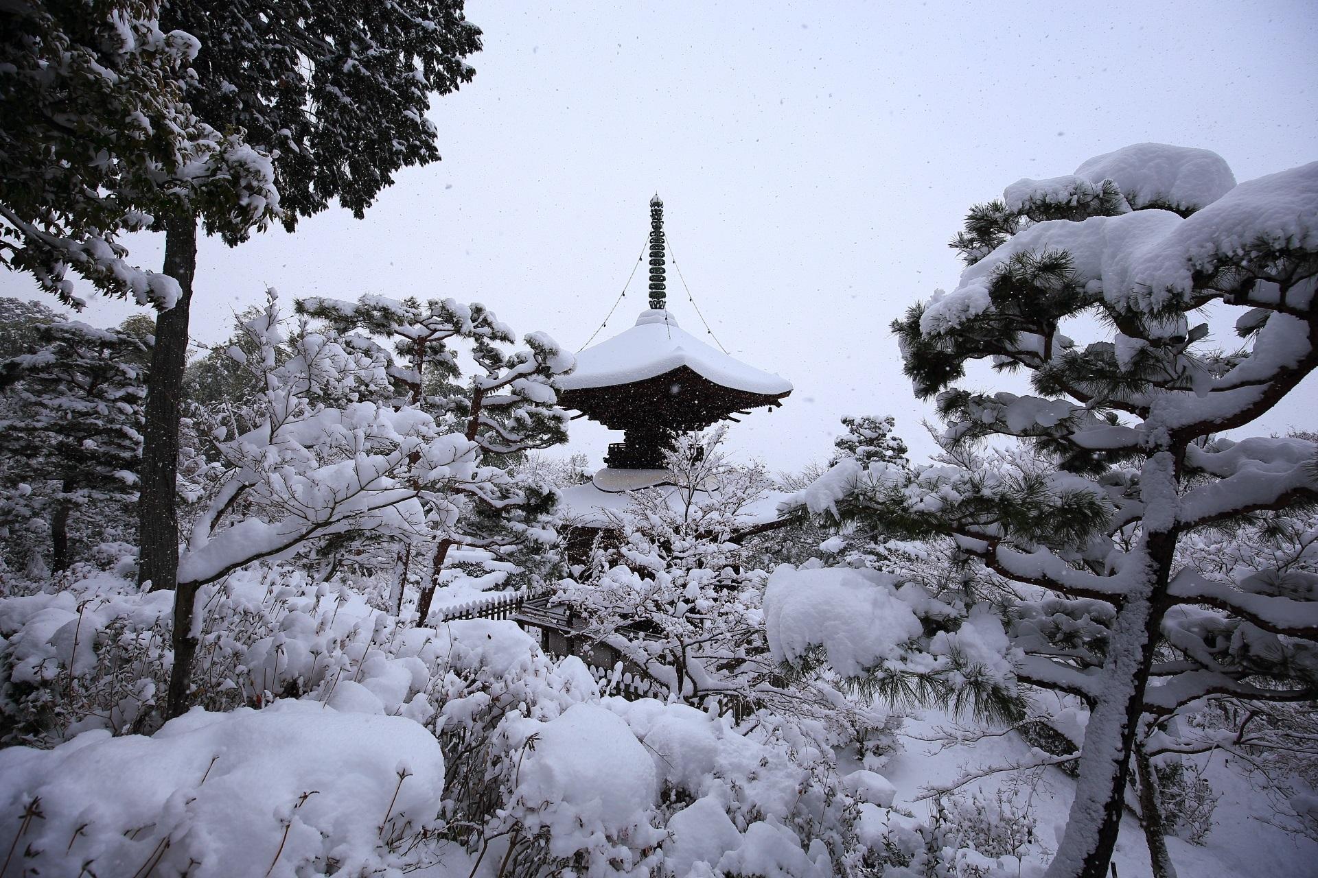 上から眺めた宝塔と周辺の雪景色