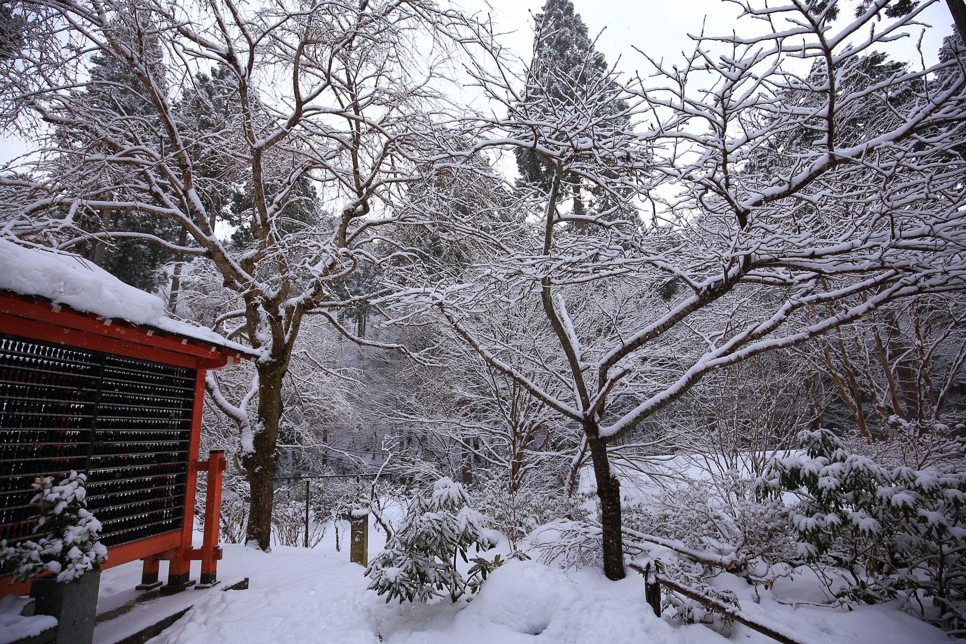 小観音像付近の雪景色